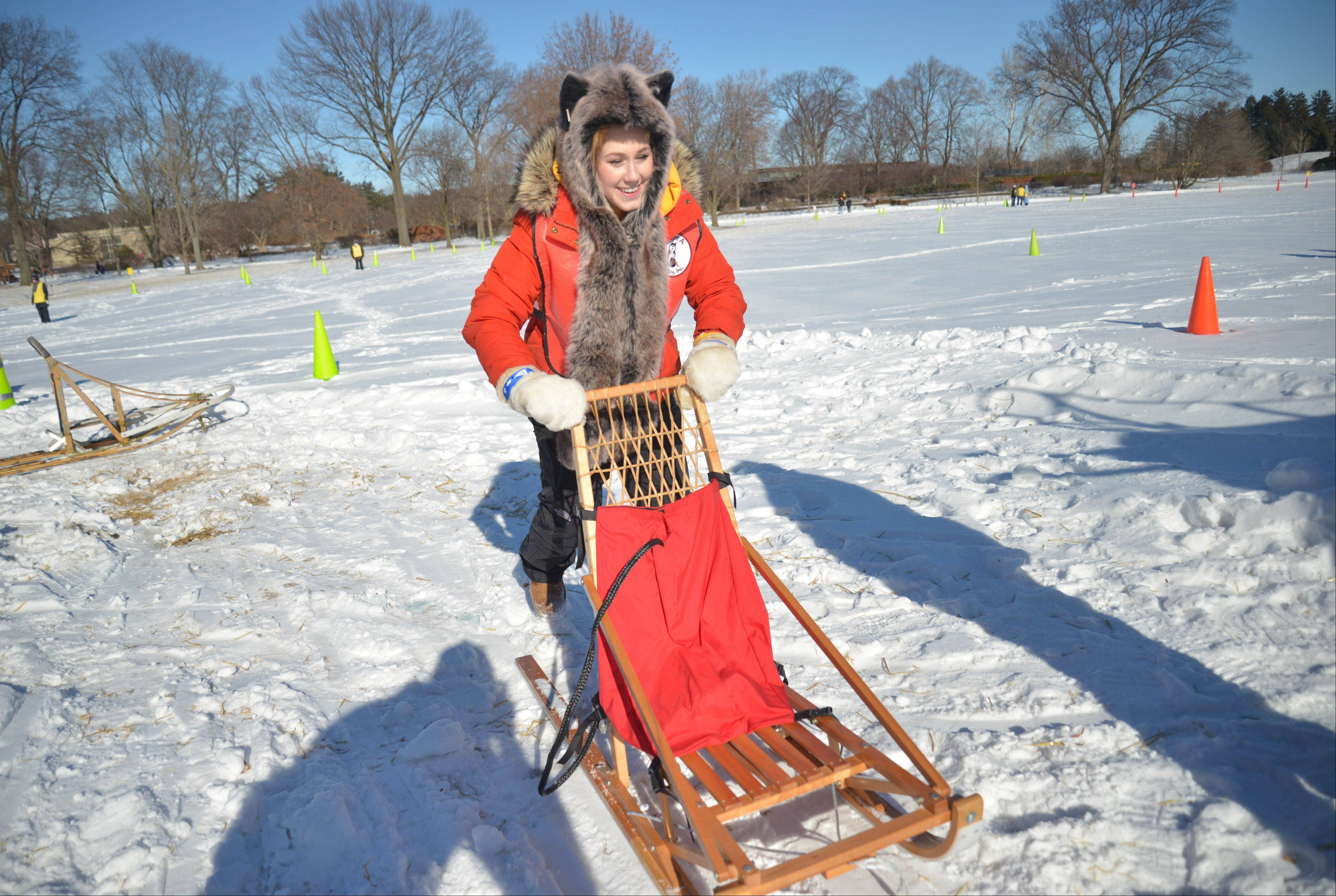Kelly McGarry of Buffalo Grove tests out a dog sled Saturday. Visitors to the Morton Arboretum's Husky Heroes, continuing Sunday, can learn more about the proper care of the high-energy breed.
