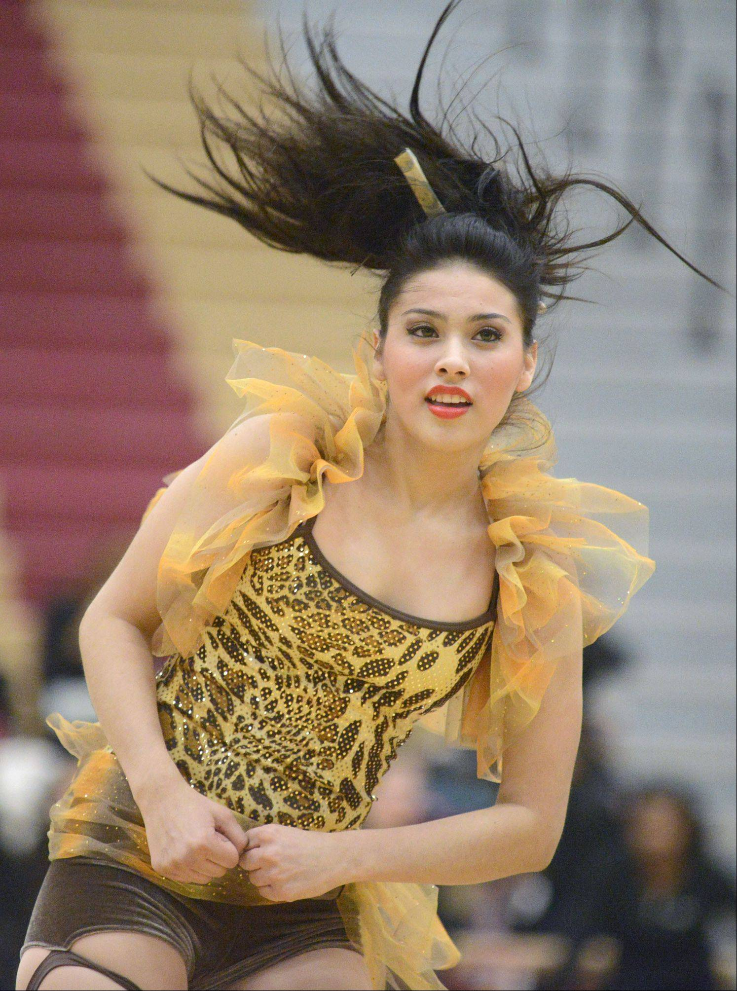 Cynthia Munoz, 17, performs with Elgin High School at the IHSA 3A competitive dance sectionals in Huntley.