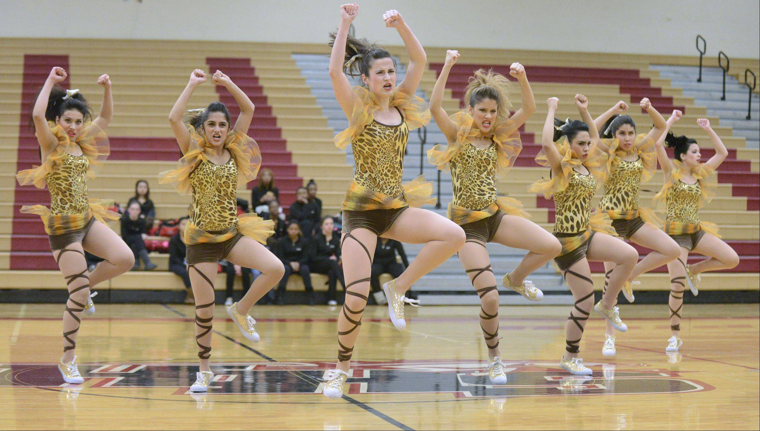 Elgin High School performs at the IHSA 3A competitive dance sectionals at Huntley High School on Saturday.