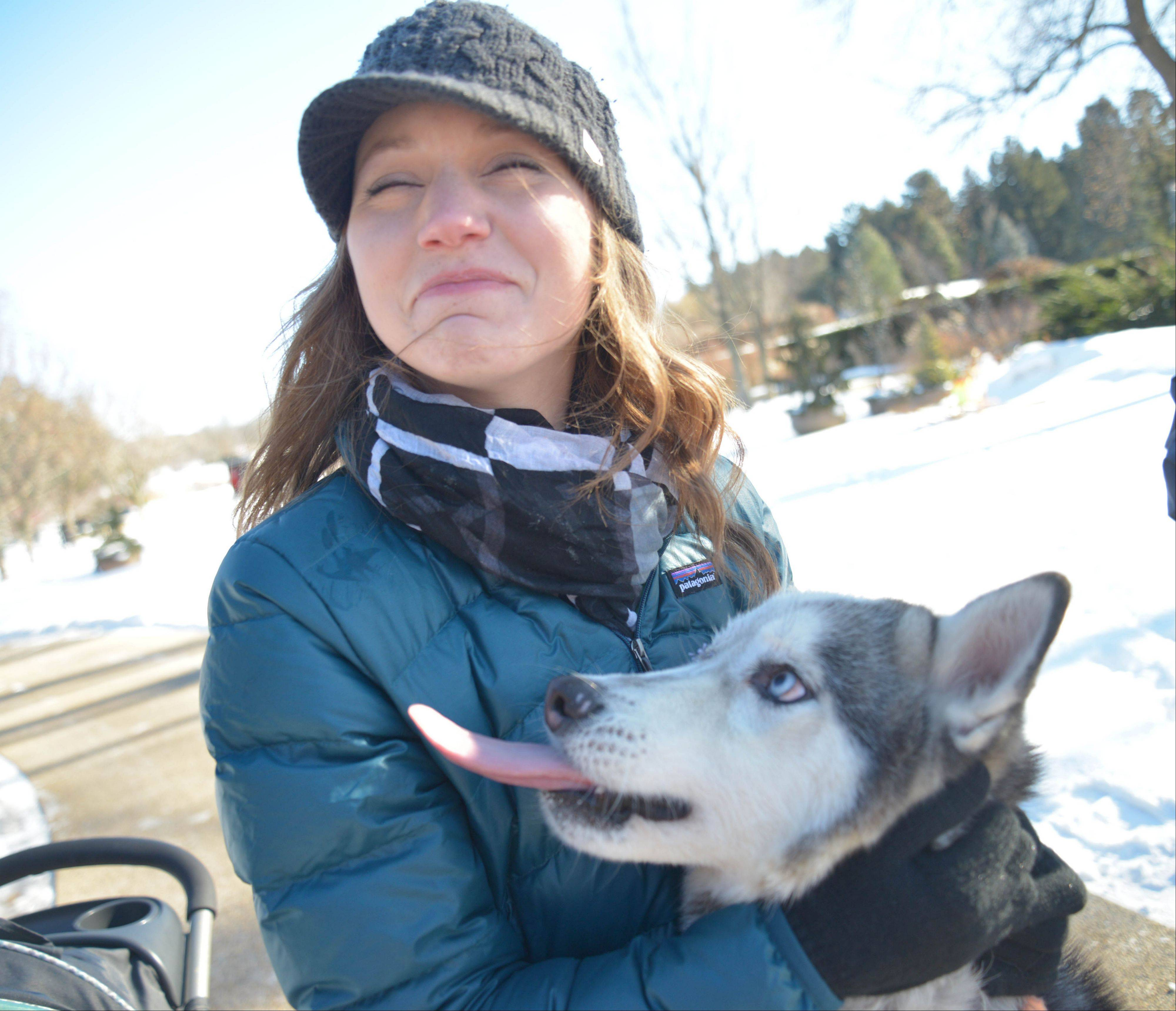 Rachael Faust, of Lombard, avoids a big wet kiss from Fozzie, one of the many dogs up for adoption at the Morton Arboretum's annual Husky Heroes program, with demonstrations of Siberian huskies pulling sleds as well as skijoring and speed demonstrations.