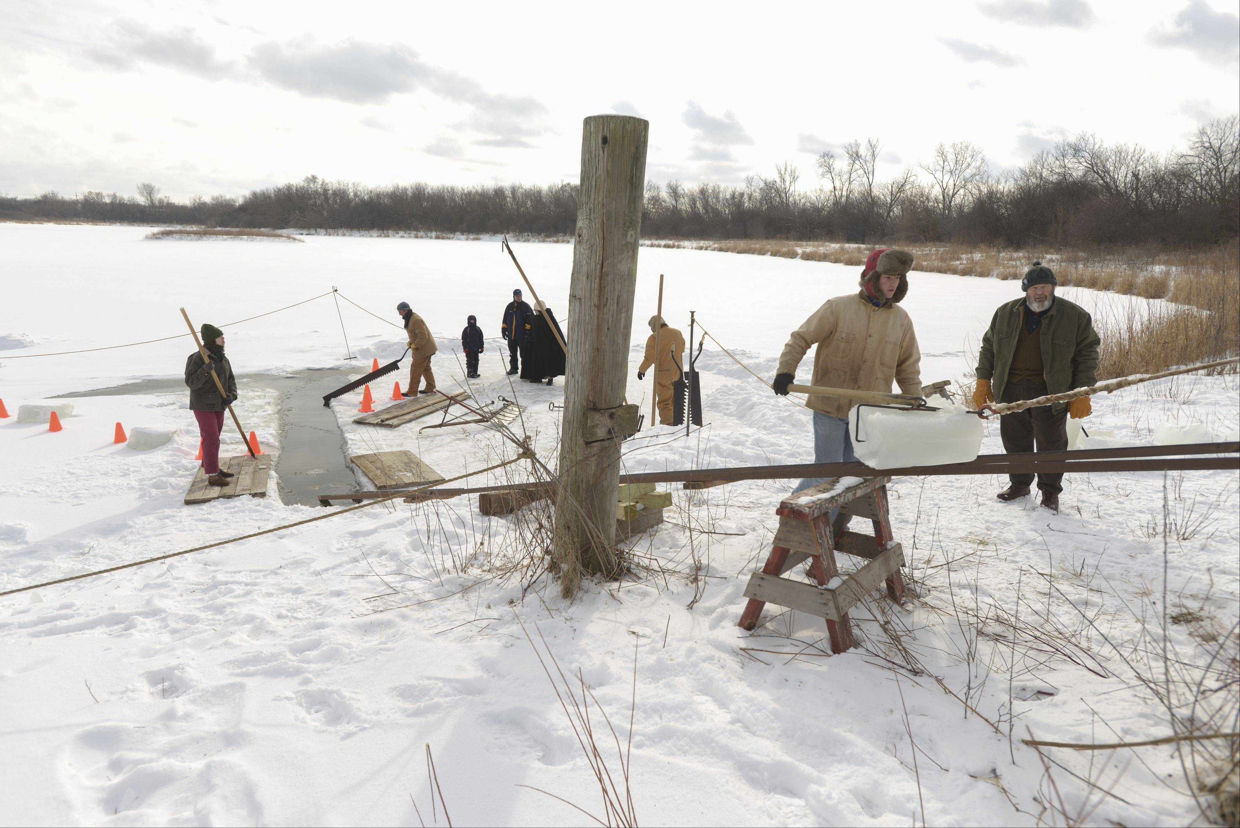 Ice blocks are moved up to a waiting wagon during the Kline Creek Farm's Ice Harvesting event Sunday in West Chicago. Visitors to the 1890s era heritage farm in West Chicago got a firsthand look at how ice was harvested and stored in rural areas before of electrical refrigeration.