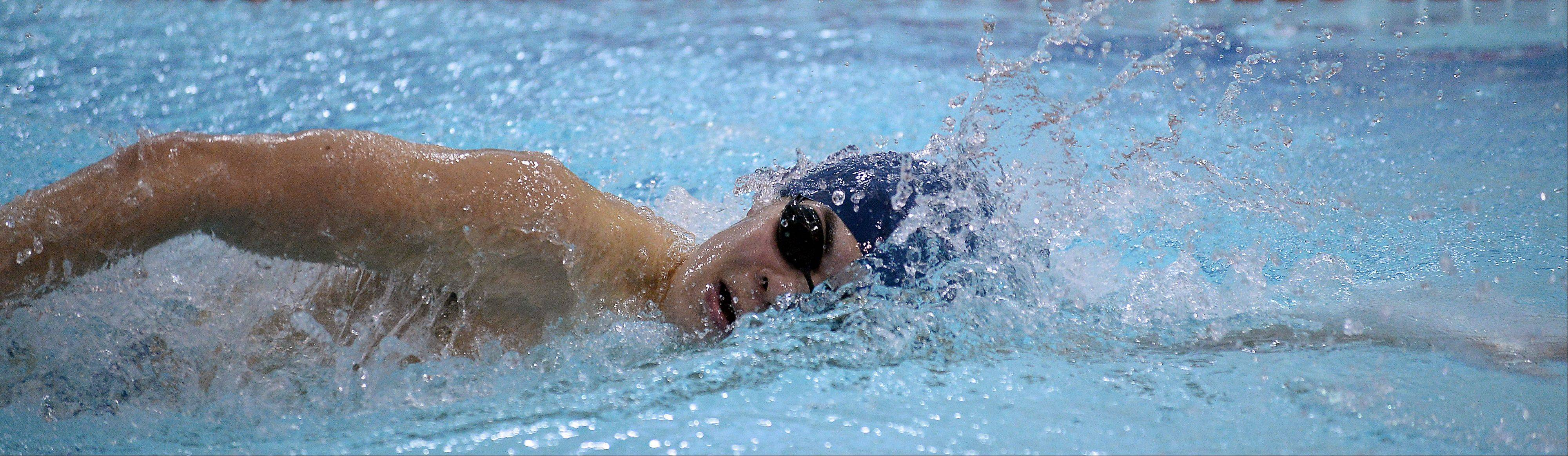 Prospect's Michael Morikado powers to victory in the 200-yard freestyle on Thursday at Olympic Pool.