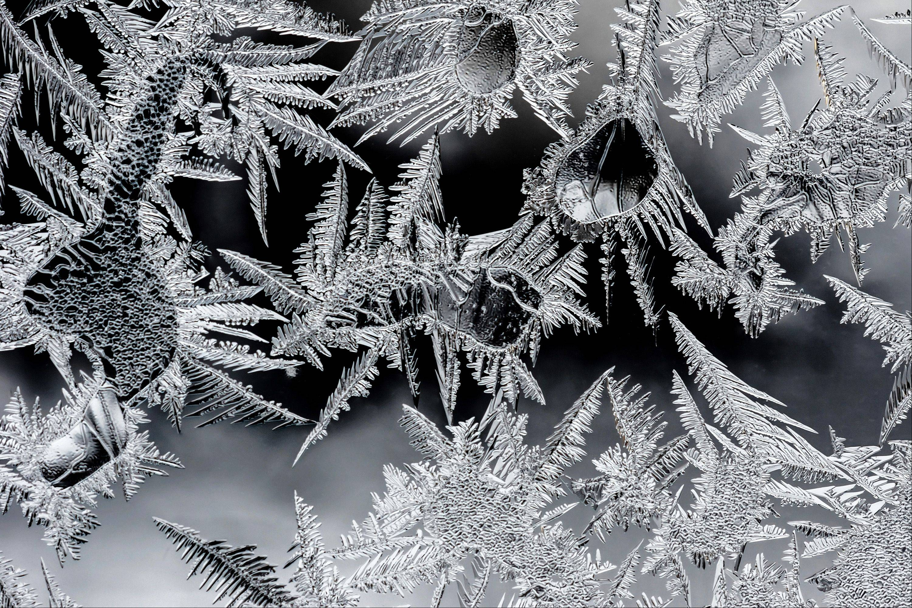 "This is the first year I�ve realty noticed these beautiful ice crystals on the insides of my garage windows. The patterns are quite intricate, and like people sometimes see objects in the clouds, I�ve ""seen all kinds of things in the arrangement of these."