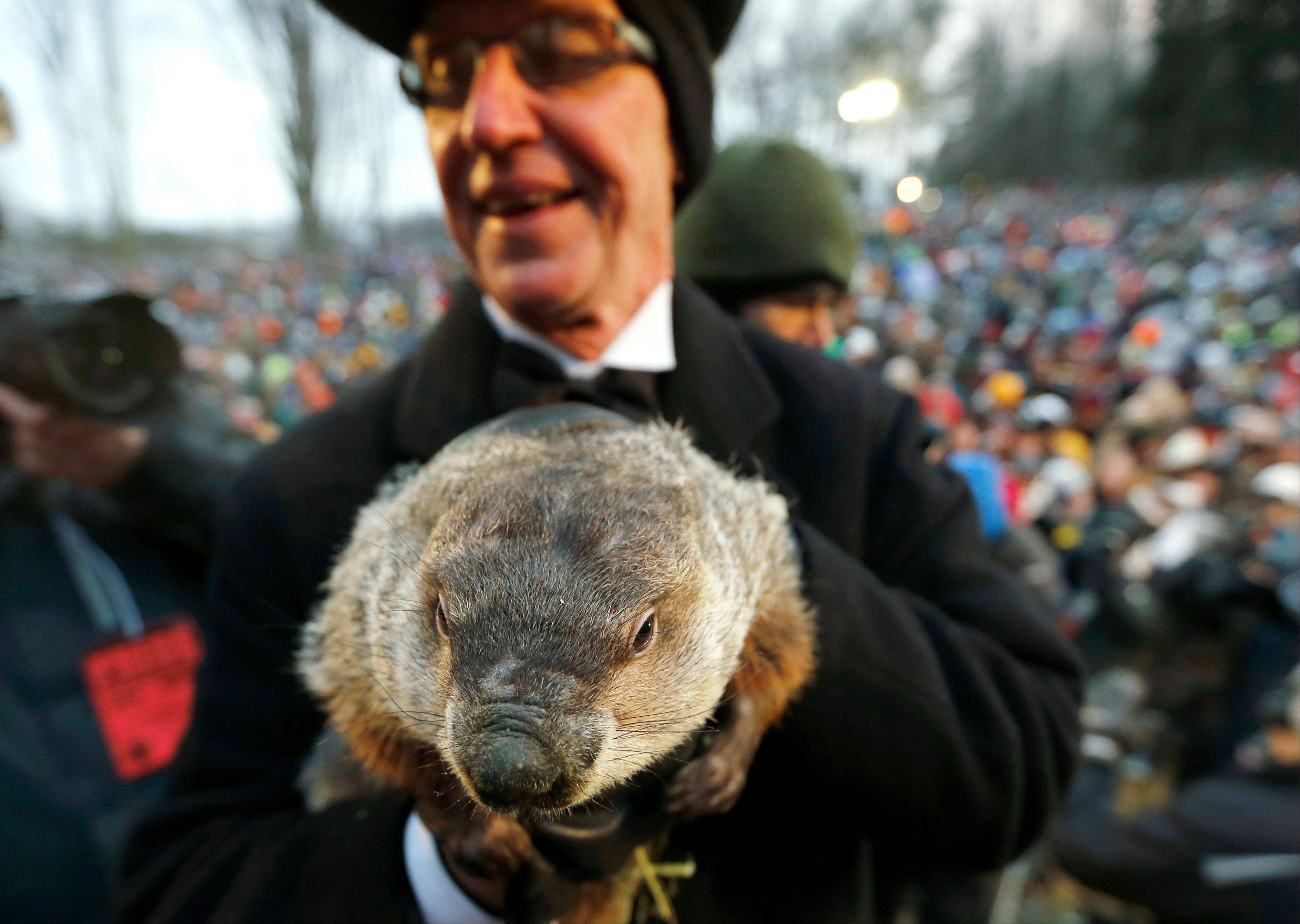 Groundhog Club co-handler Ron Ploucha holds the weather predicting groundhog, Punxsutawney Phil, after the club said Phil did not see his shadow and there will be an early spring, on Groundhog Day, in Punxsutawney, Pa.