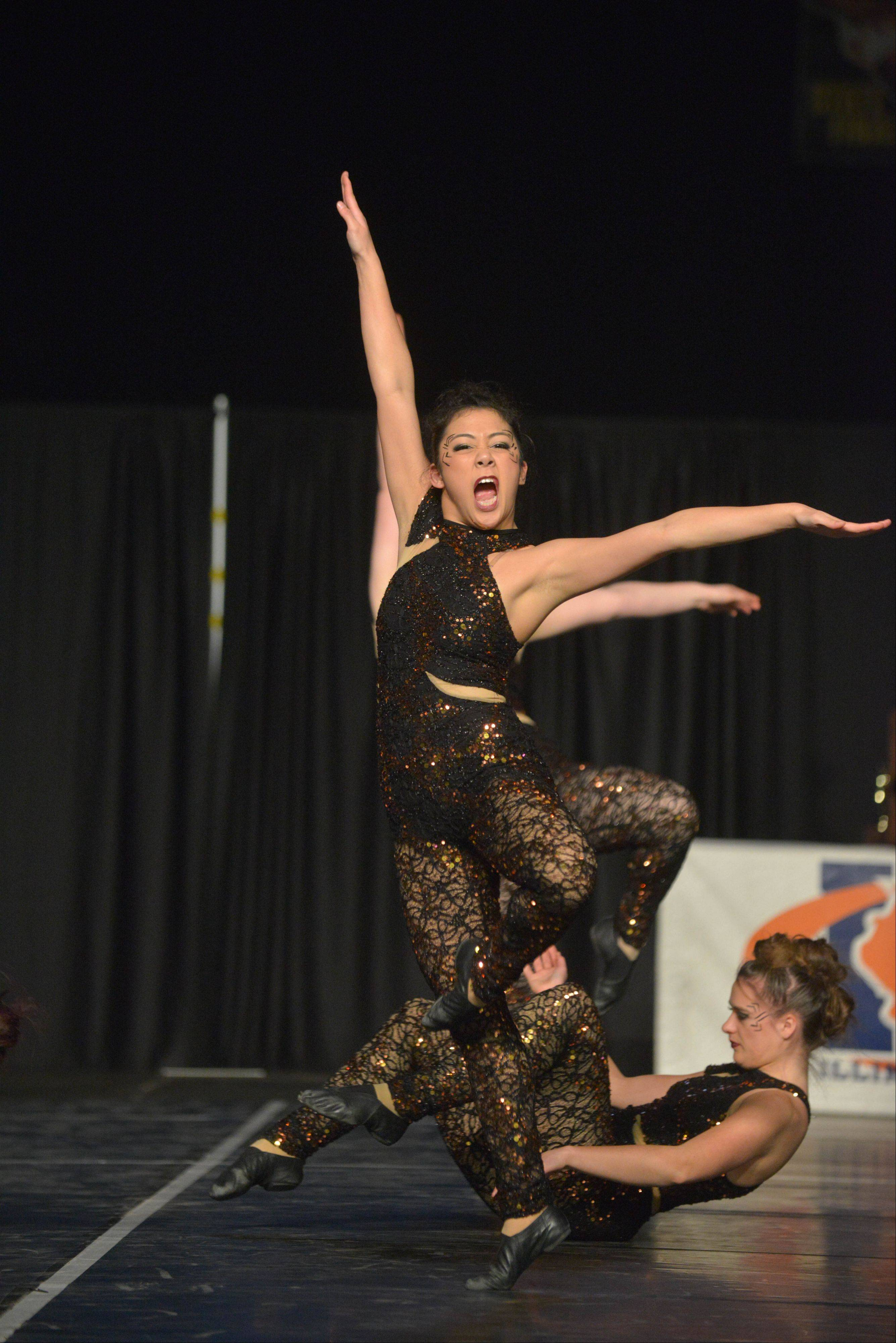 Downers Grove South High School took part in the IHSA Dance State Final at U.S. Cellular Coliseum in Bloomington Saturday. 90 teams vied for state champion at this event.