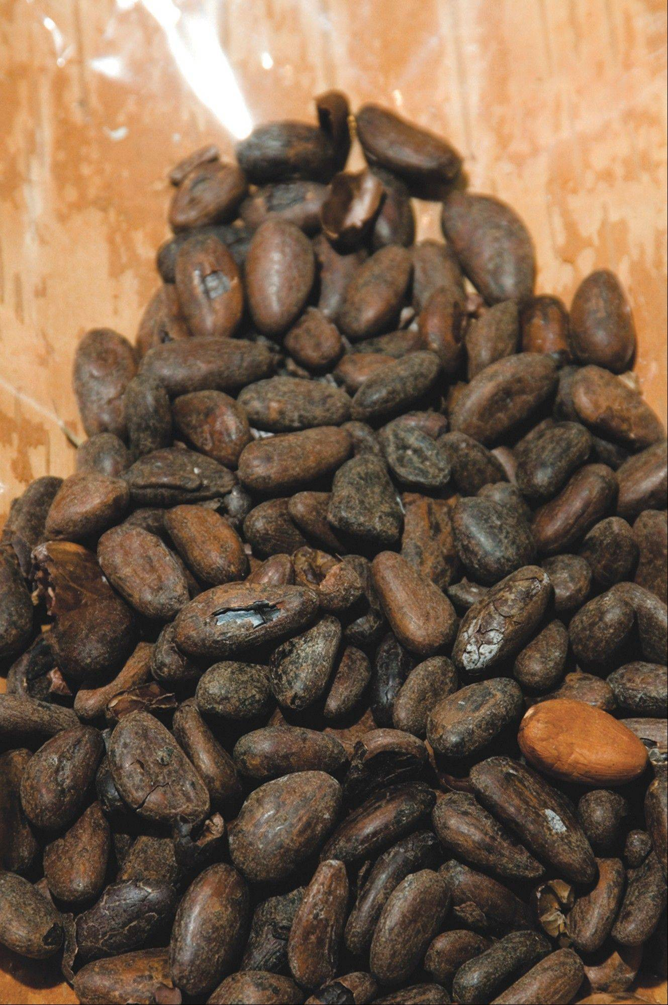Cacao beans can be ground into nibs, a healthful chocolate alternative.