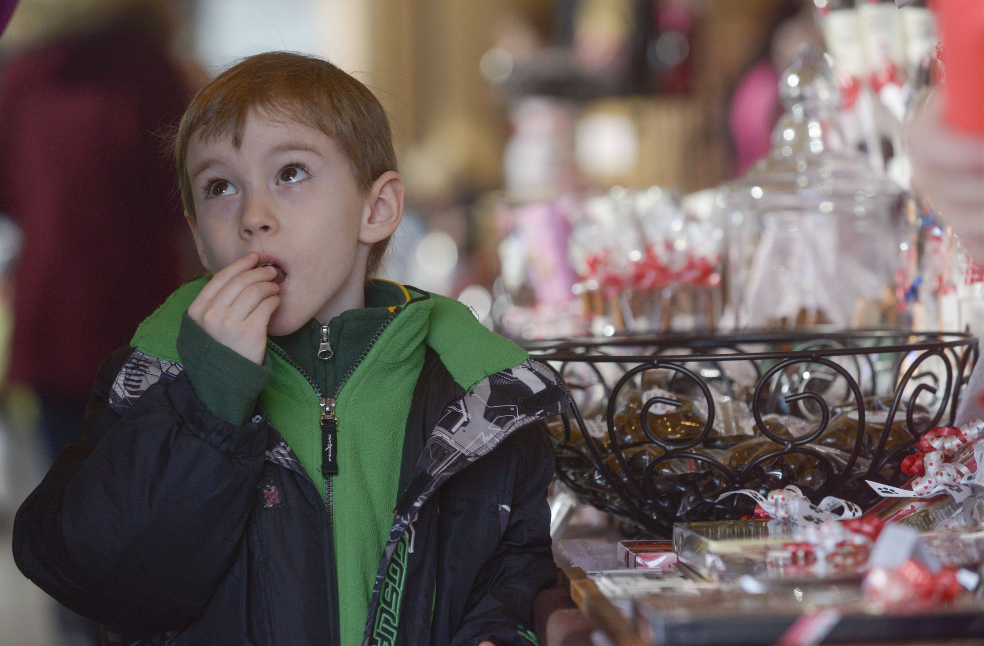 Colin Graveen, 5, of Bolingbrook samples some chocolate Sunday at the Morton Arboretum's Chocolate Expo and Market. The event featured nearly 20 vendors offering different chocolate concoctions.