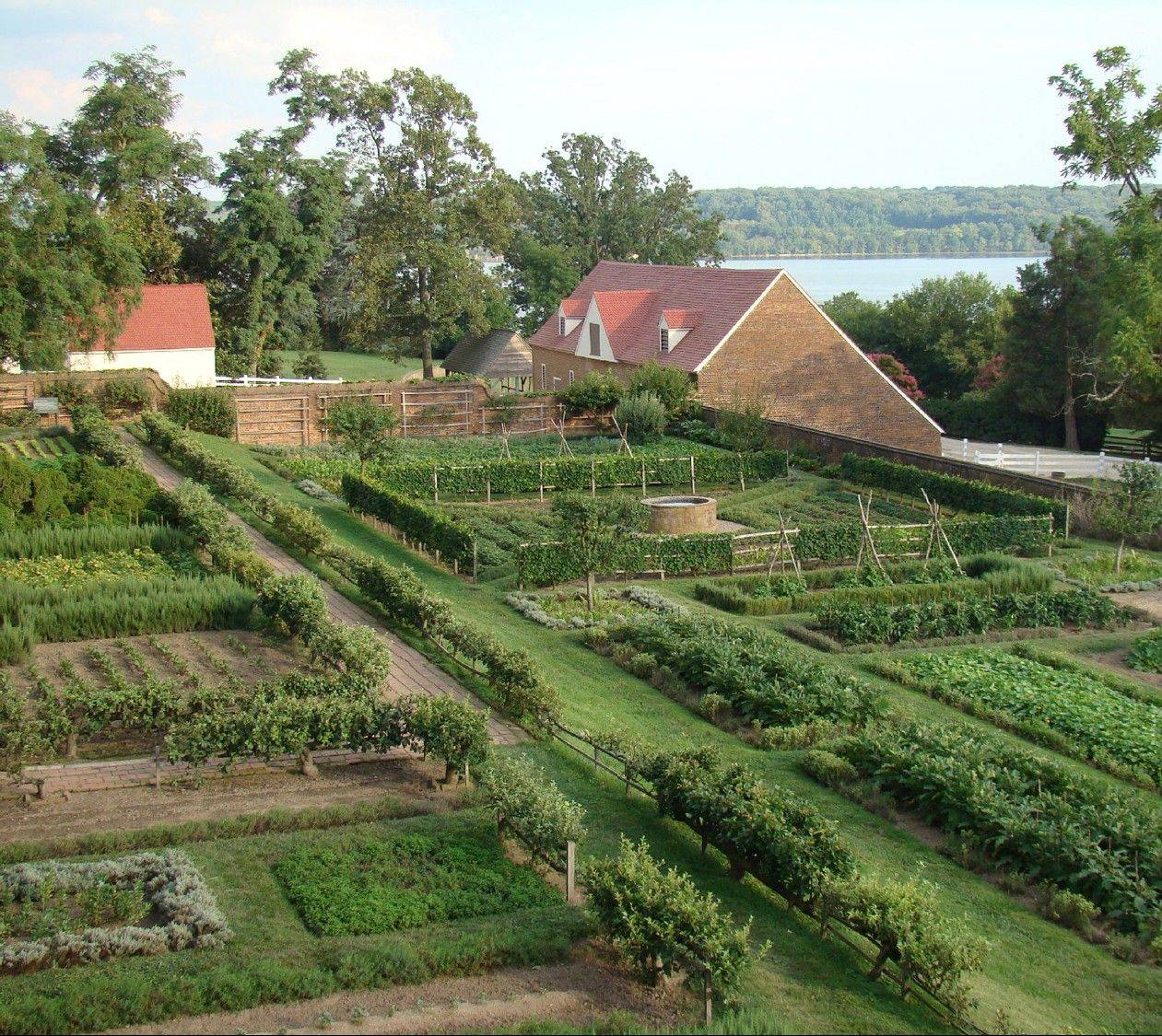 Vegetables were of special importance to George Washington; pictured is the kitchen garden at his Mount Vernon estate.