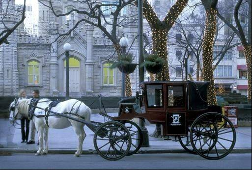 A Chicago alderman wants to outlaw horse-drawn carriage rides, citing concerns about safety, sanitation and animal cruelty.