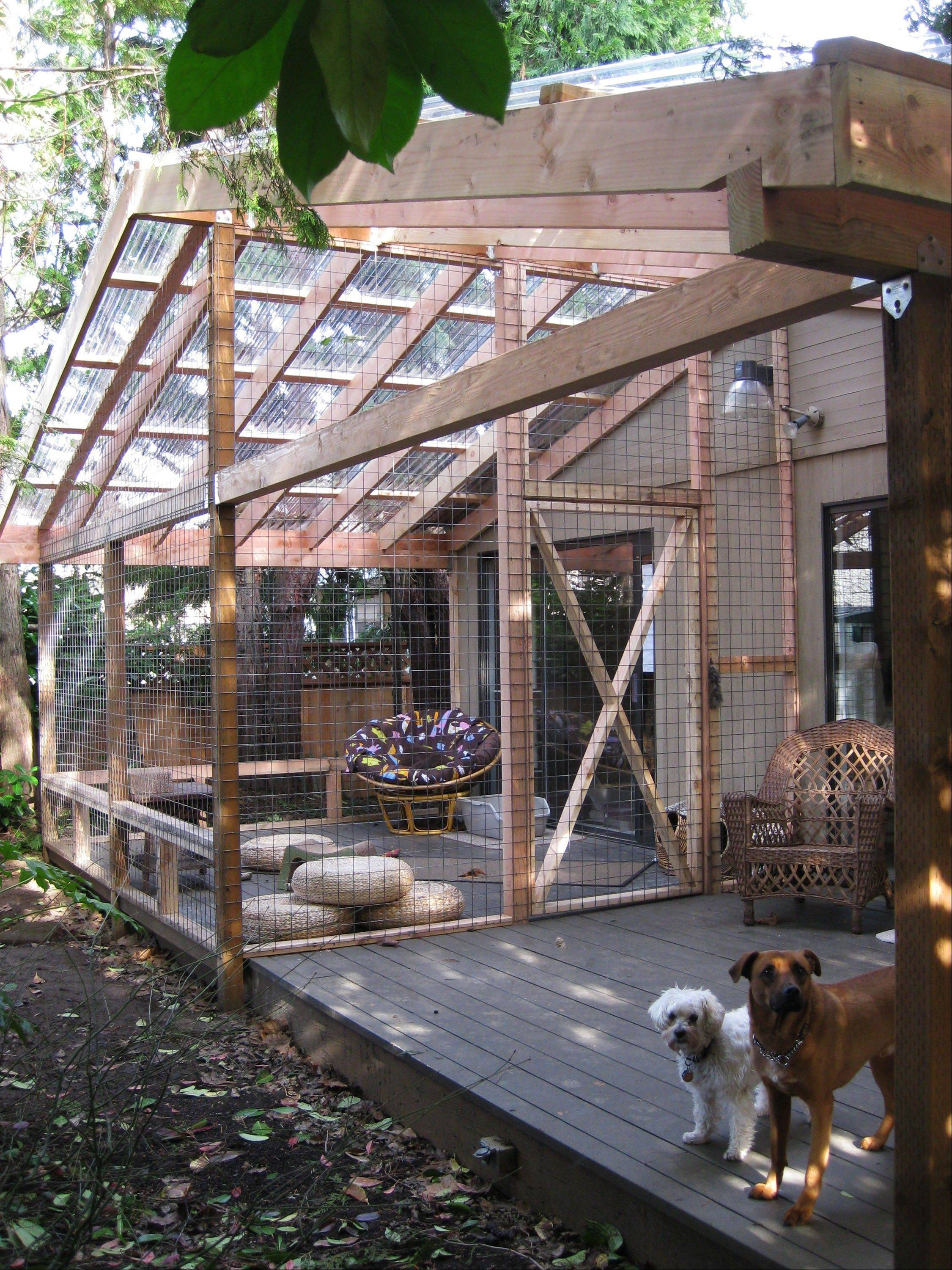 Carrie Fagerstrom's catio allows her eight cats to enjoy the outdoors, but not the harmful elements that come along with it, in Portland, Ore. The playground for the cats has an 11 foot by 14 foot base and is 11 feet high, with mesh wiring on the sides and a clear roof. The room includes scratching posts, a small water fountain and plenty of toys to entertain them.