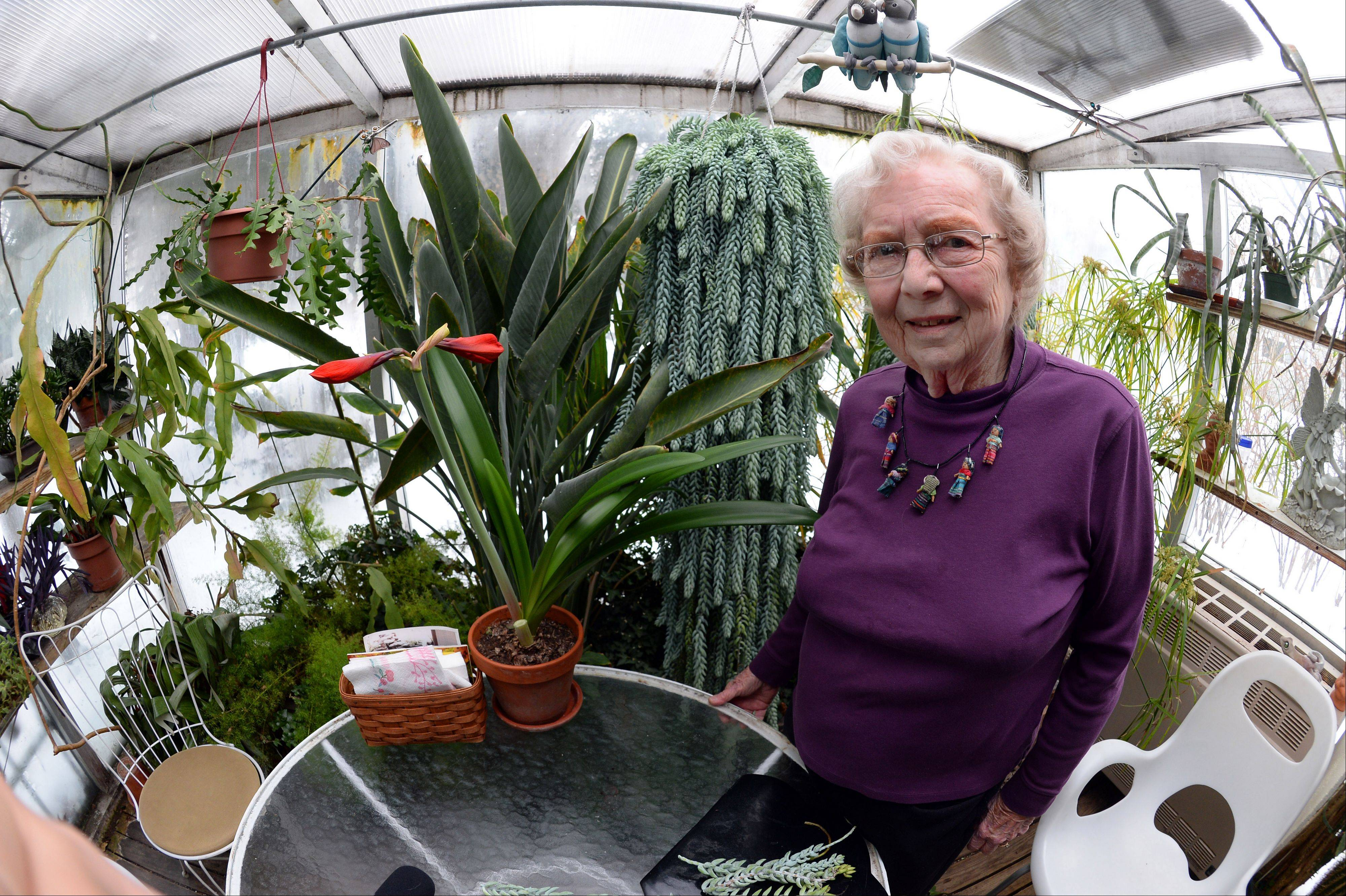 Picking the plants she can take to her new home in The Heritage of Des Plaines is difficult for Penny Bailey of Rolling Meadows. The 85-year-old widow spent countless hours with her husband, Bill, in their 75-degree greenhouse built onto the back of their house.
