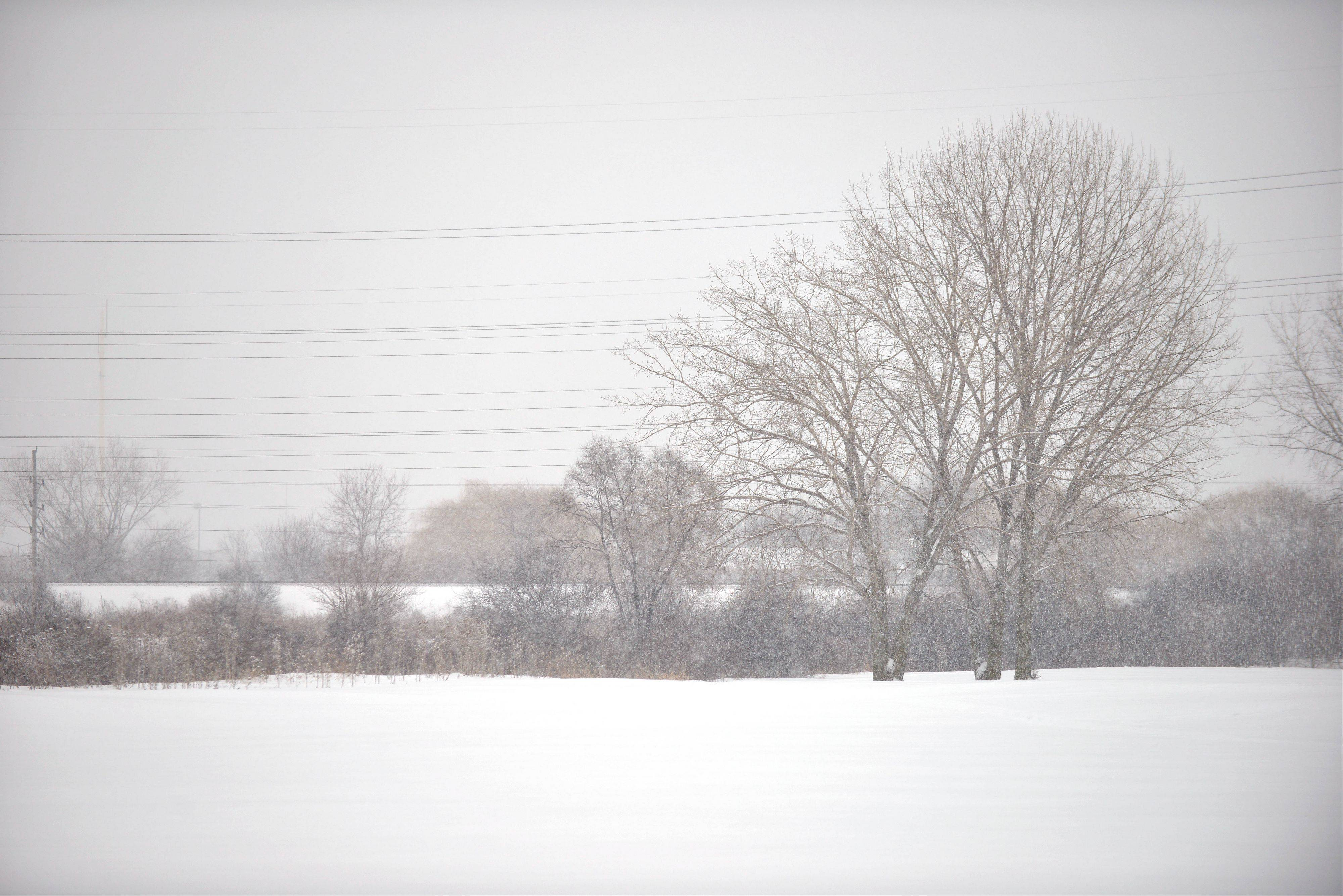 A fresh blanket of snow falls on a field in Naperville Saturday afternoon.