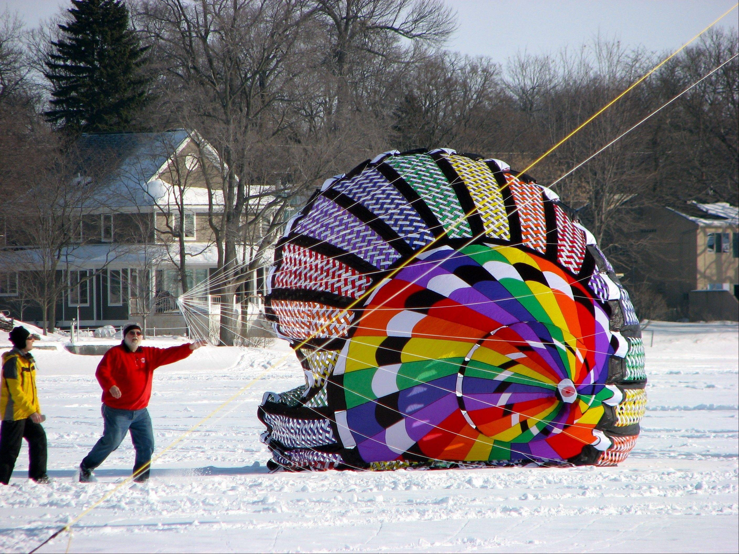 "Color the Wind festival organizer Larry Day will feature his 40-foot teddy bear, ""Buddy,"" along with other huge inflatable kites, during the popular festival in Clear Lake, Iowa. Sport kite teams also will perform synchronized kite programs to music."