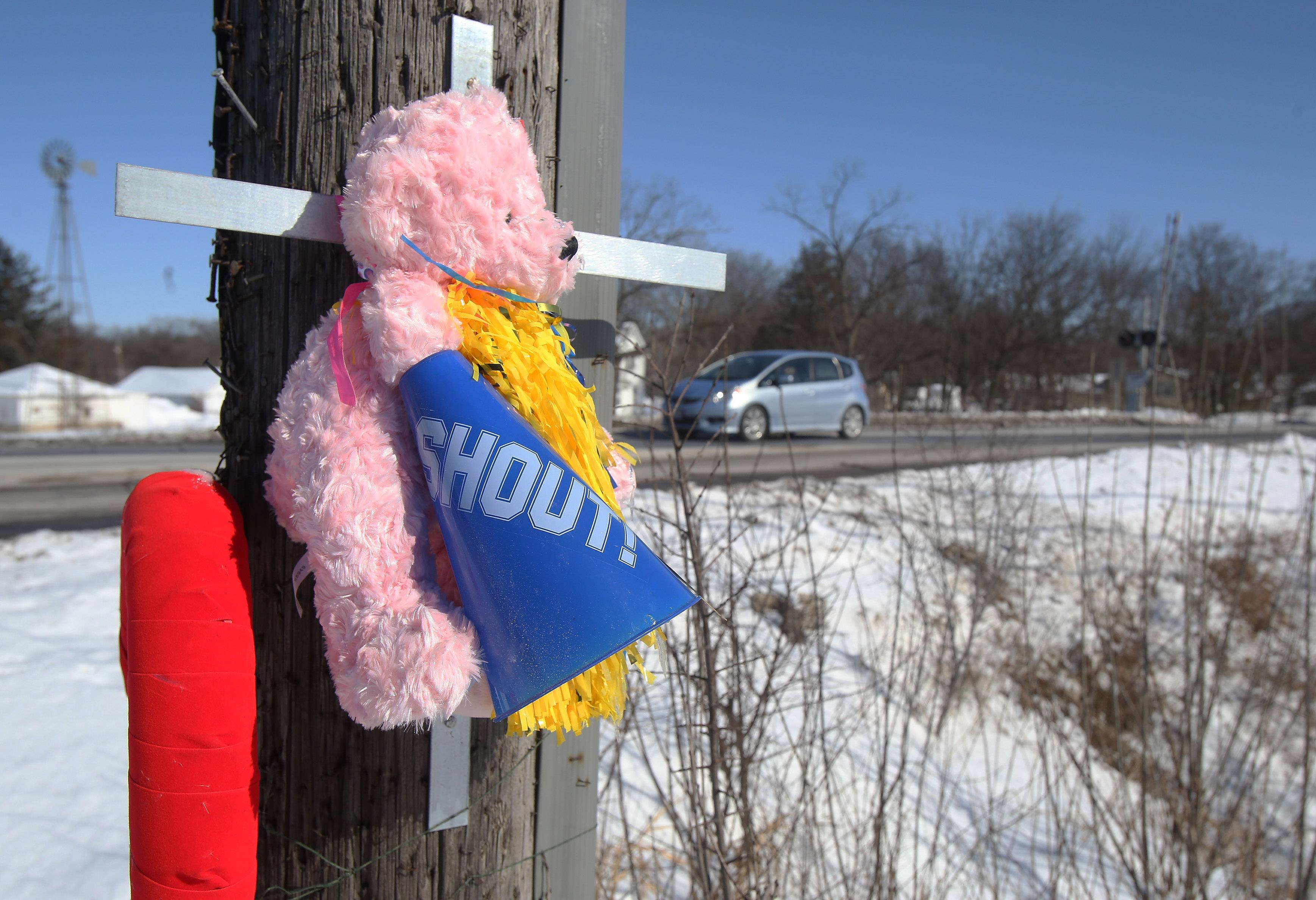 Memorials at scene of crash that killed Francisco Carranza and his daughter, Alyssa, in Round Lake Park. Police said Carranza drove in front of a Metra train at Route 134 and Porter Drive on Jan. 22. He had a blood alcohol level of .32 percent — four times the legal limit — when the wreck occurred, police said.