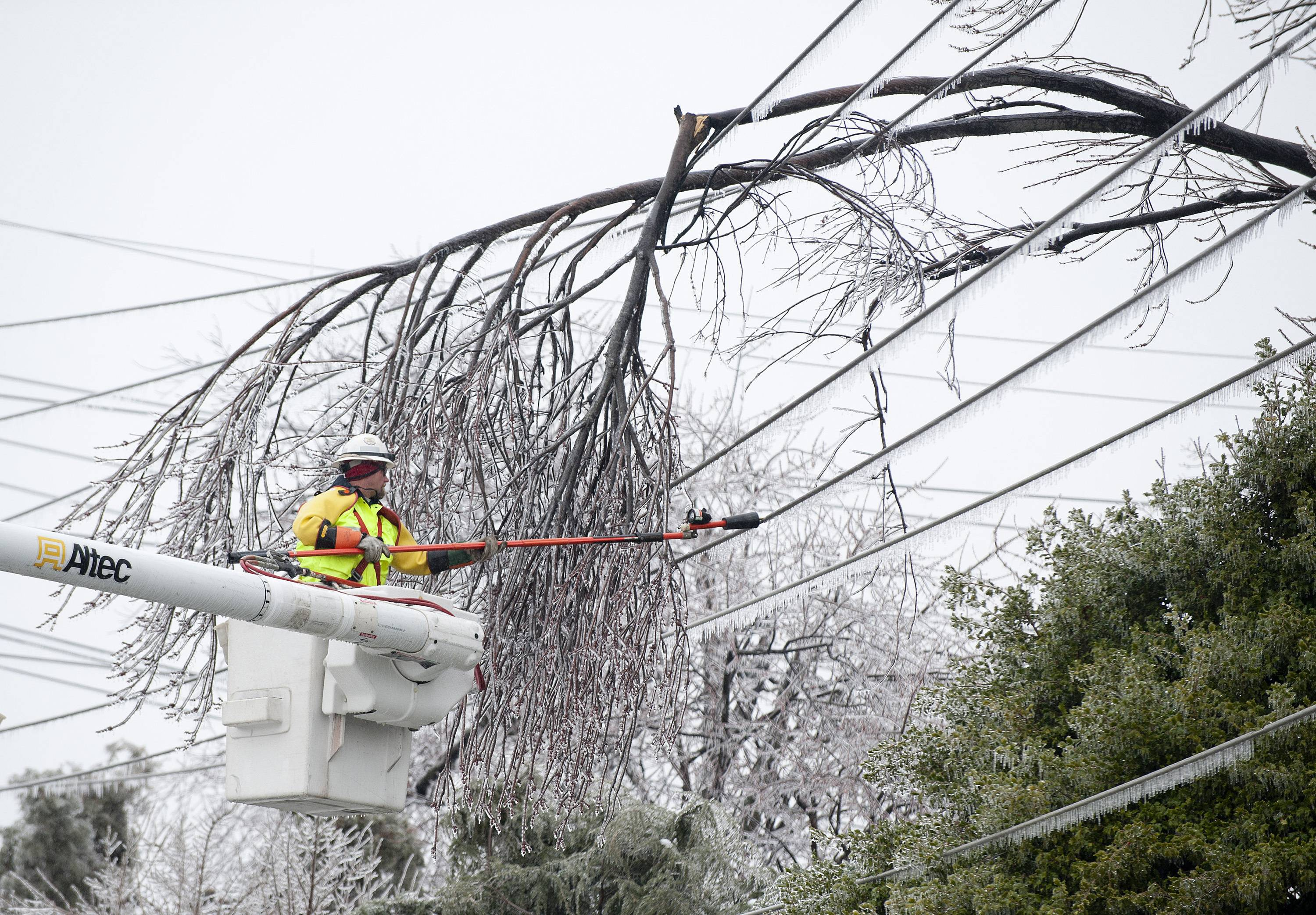 A Potomac Edison worker begins to remove a number of fallen branches from a high voltage line along Rosemont Avenue, Wednesday, Feb. 5, 2014, in Frederick, Md. Many area homes and traffic lights were without power.