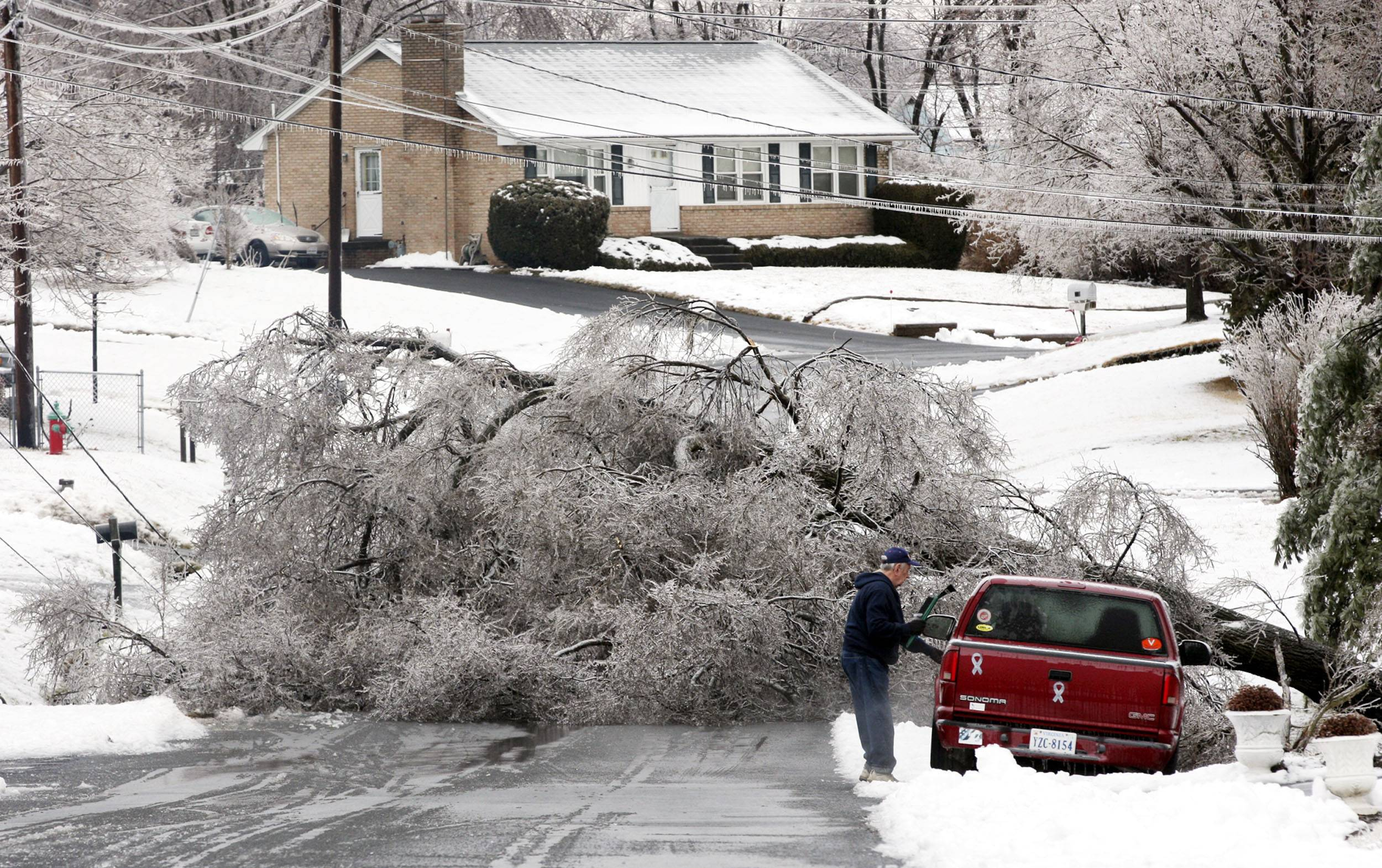 A ice-covered tree fell across Milam Drive east of Winchester, Va., Wednesday Feb. 5, 2014.