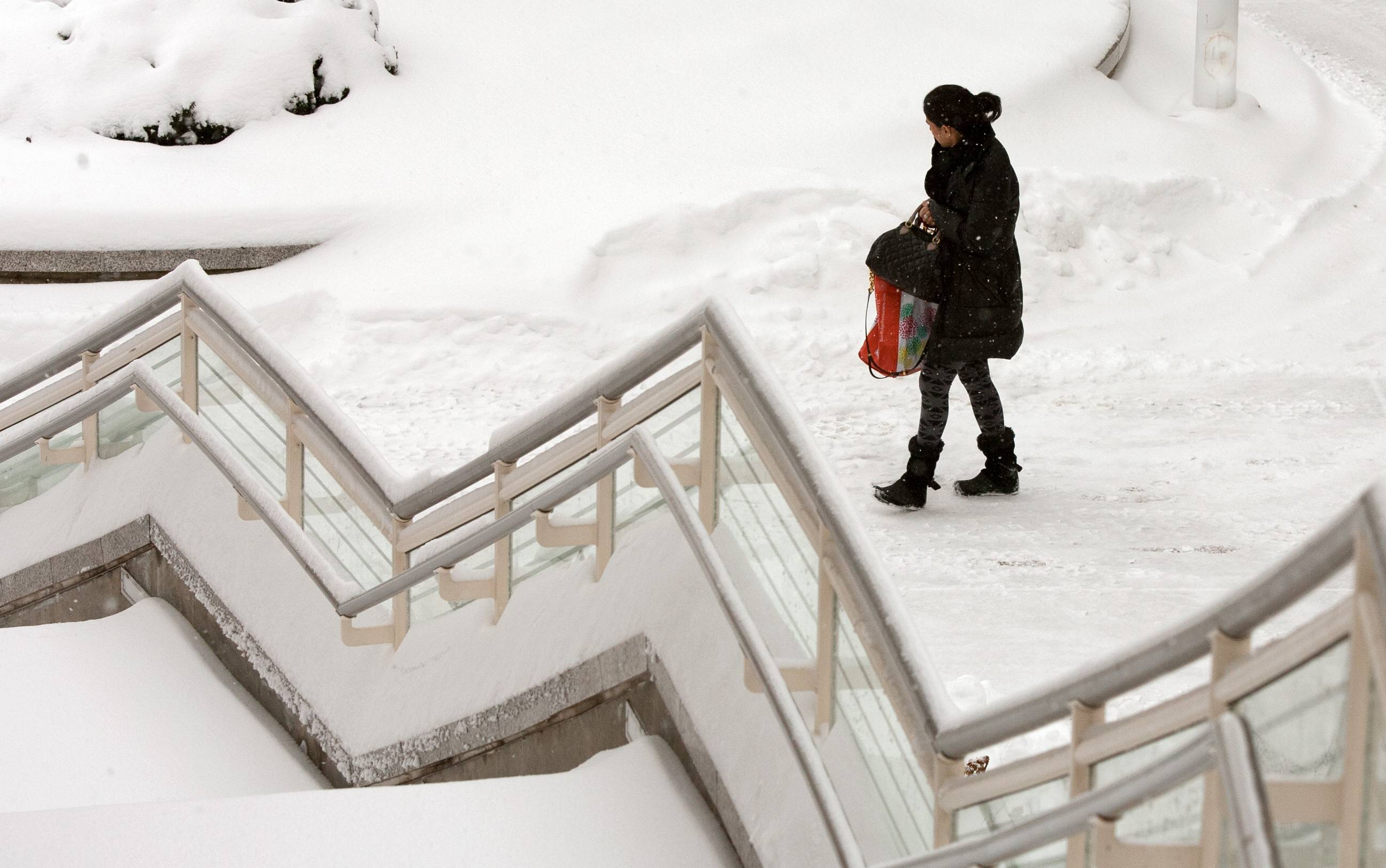 As snow continues to fall, only a handful of shoppers patronized the Oak Brook Mall in Oak Brook, Ill. on Wednesday, Feb. 5, 2014.