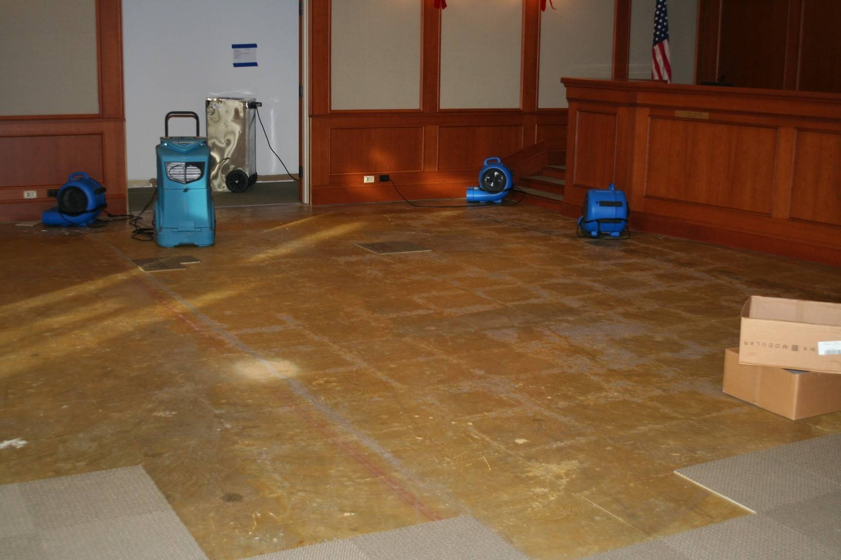 Portions of carpet in the Mount Prospect village board chambers had to be torn out last month after a fire sprinkler failed, sending water into the room and other parts of village hall. Repairs are expected to cost the village about $171,000, though officials hope to recoup some from insurance.