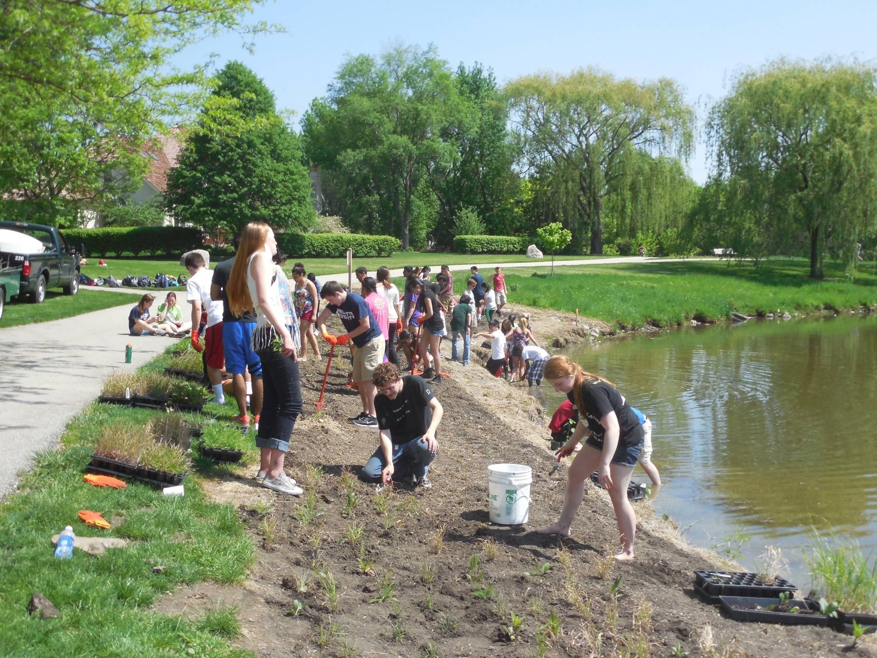 Lining lake shorelines with native plants, these Waubonsie Valley High School students teamed with the Fox Valley Park District to promote sustainability. The plants filter runoff, keeping waterways clean and creating a healthier environment for residents and wildlife alike.