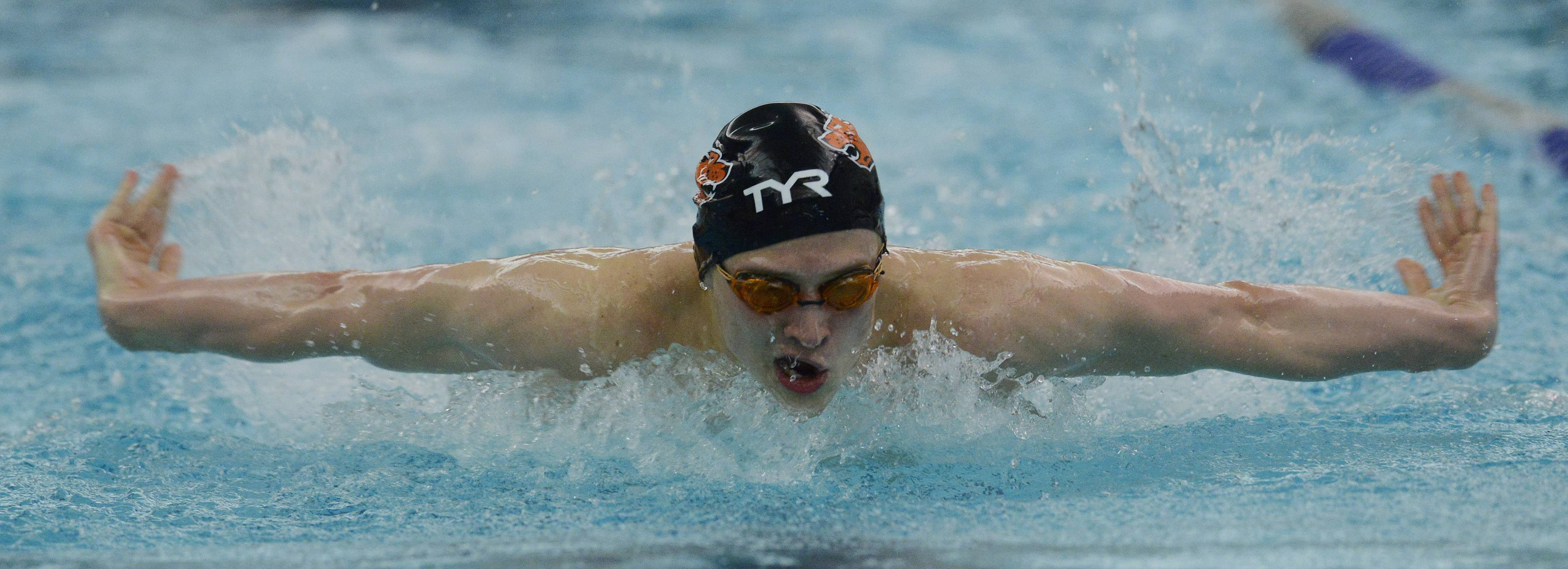 Libertyville's Alex Snarski swims butterfly in the 200-yard individual medley during the North Suburban Conference boys swimming meet at Vernon Hills on Saturday.
