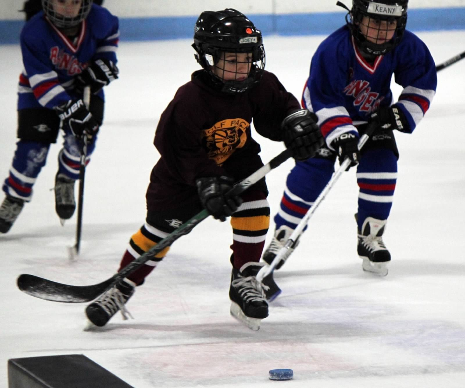 Boys and girls, ages 4-9, are invited to the Try Hockey For Free event Saturday, March 1, at the Triphahn Ice Arena, in Hoffman Estates. Register at www.tryhockeyforfree.com.