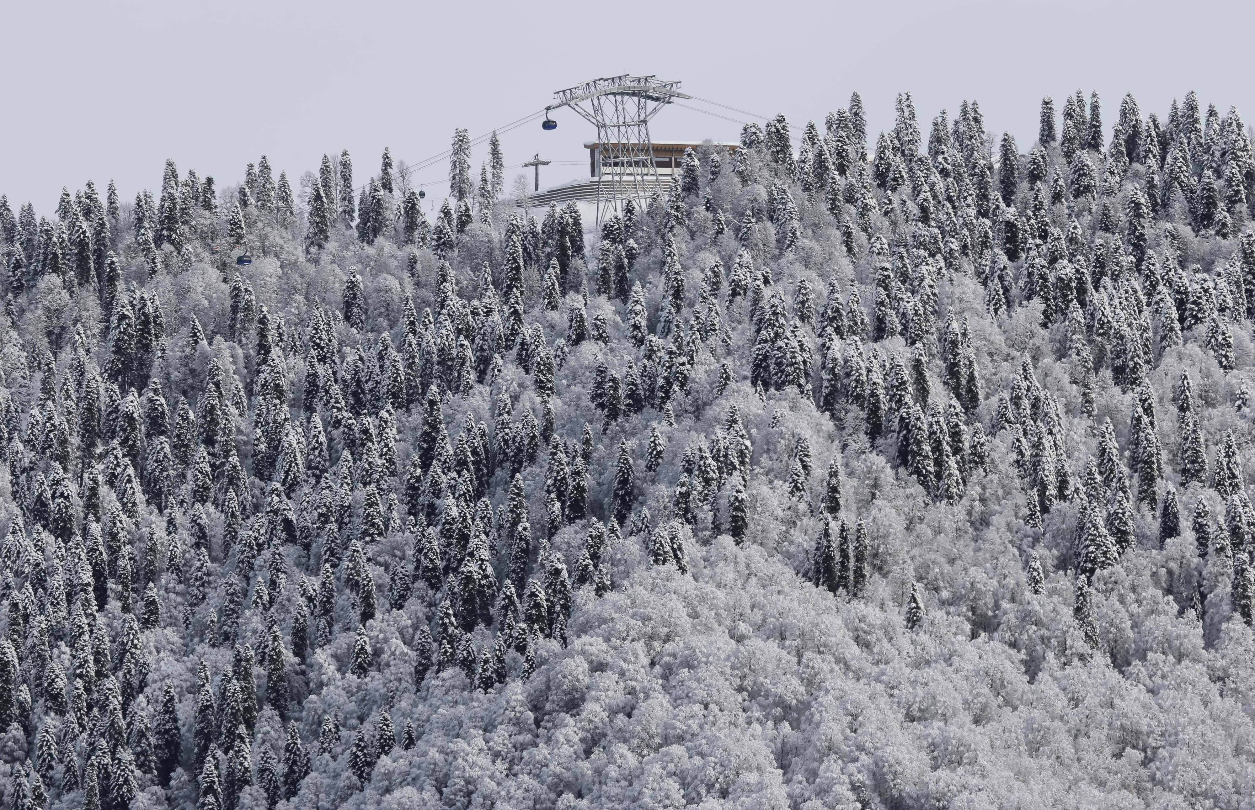 A gondola passes a stand of trees Wednesday after an overnight dusting of snow near the Rosa Khutor Extreme Park at the 2014 Winter Olympics in Krasnaya Polyana, Russia.