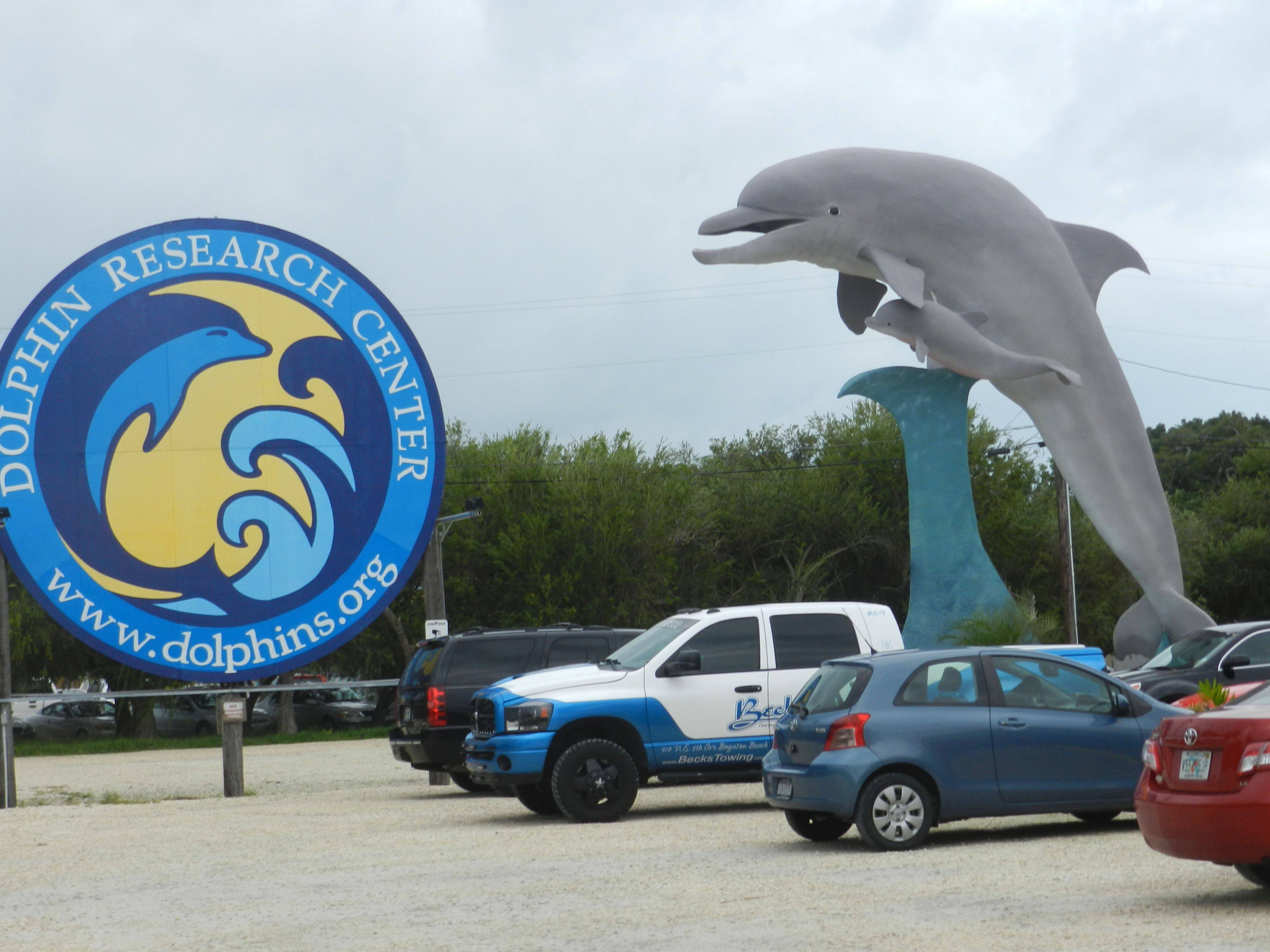 Dolphin Research Center.