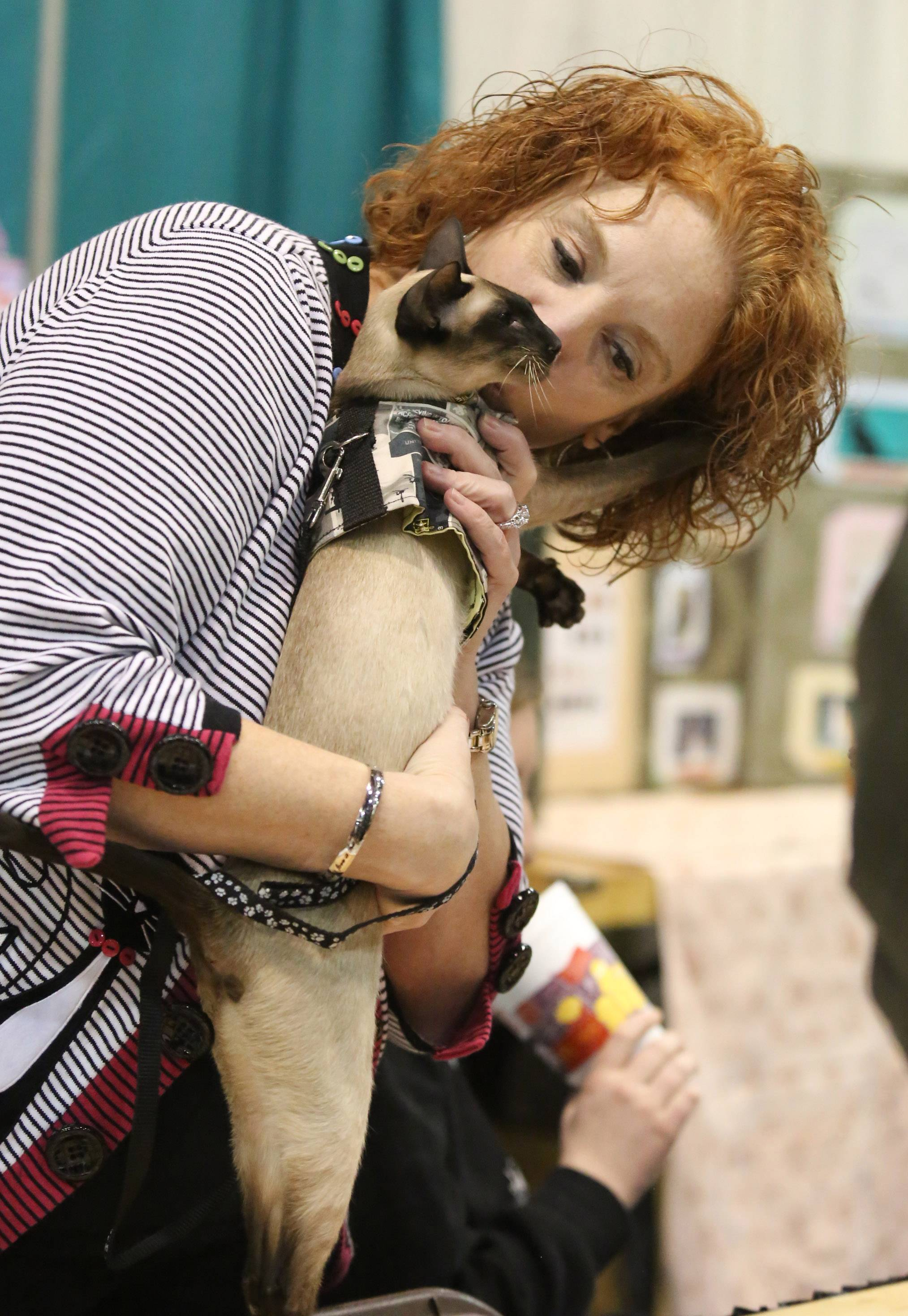 Theresa Hotz of Plainfield kisses her 1-year-old siamese cat Remmi at Lincoln State Cat Club's 54th annual CFA All-Breed and Household Pet Benefit Cat Show at Harper College on Saturday in Palatine.