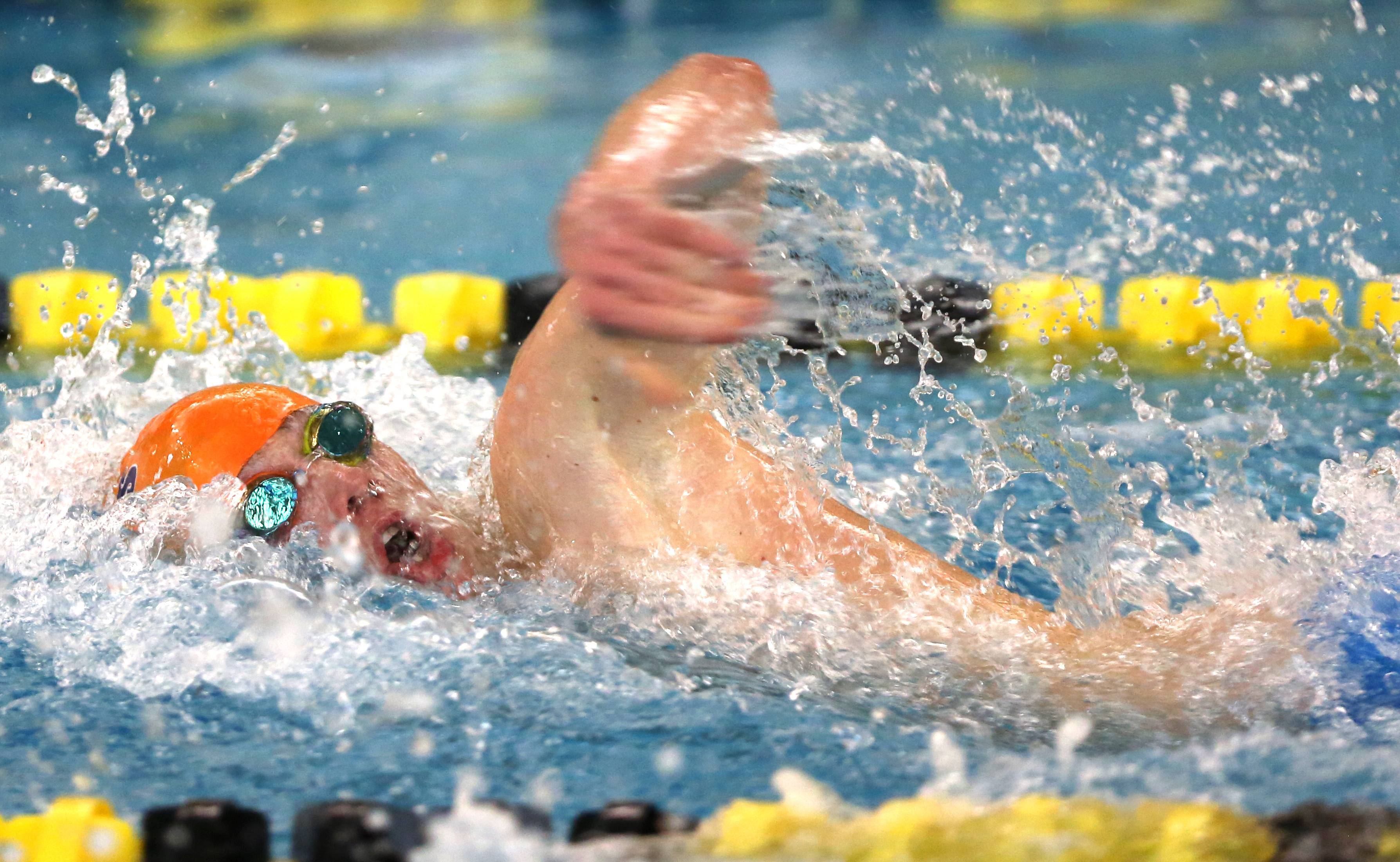 Naperville North's Steven Missak swims the 100 yard freestyle during the Metea Valley boys swimming sectional.