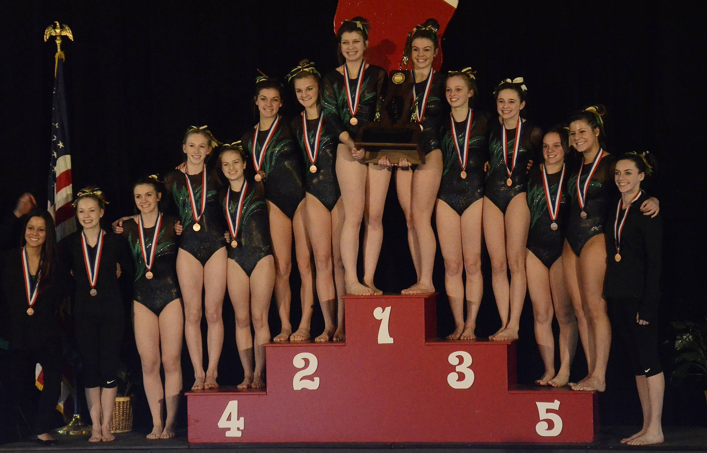 Fremd took third in the final team standings in the girls gymnastics state finals at Palatine on Saturday.