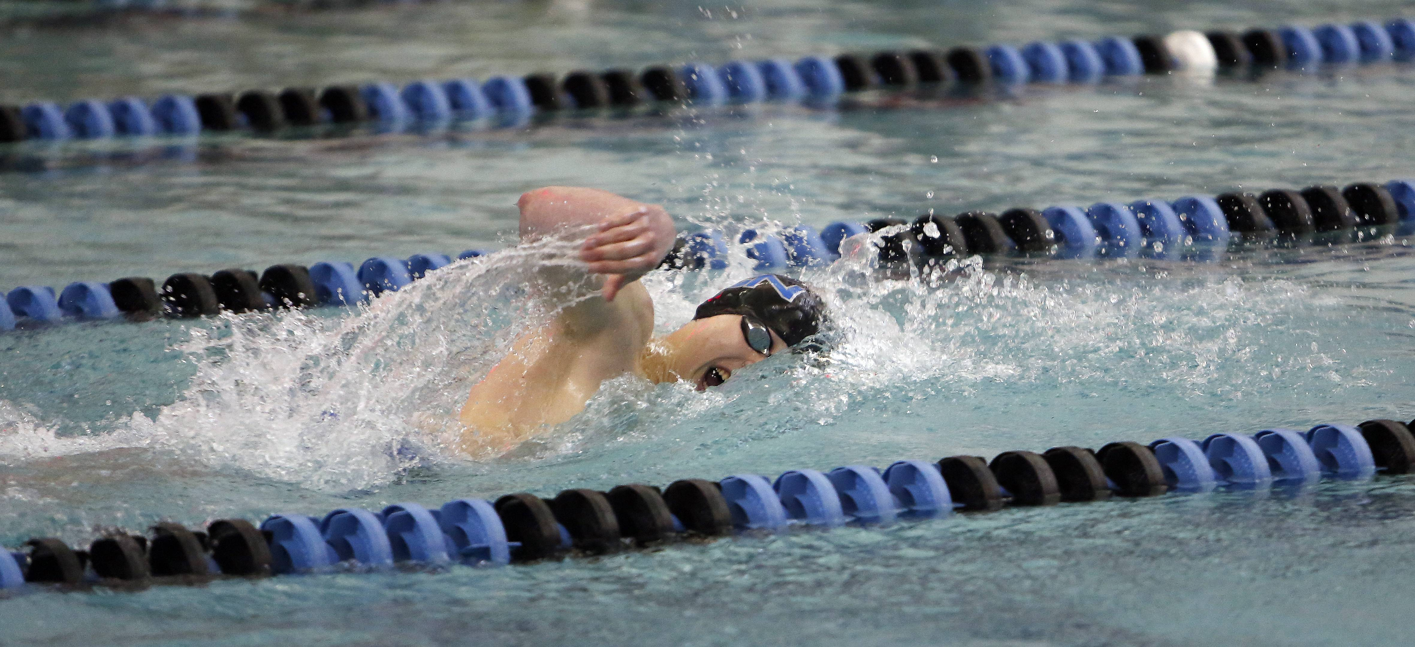 St. Charles North's Joe Myhre competes in the 200 yard freestyle during the 2014 Boys Swimming and Diving IHSA Sectional Championships Saturday at St. Charles North High School in St. Charles.