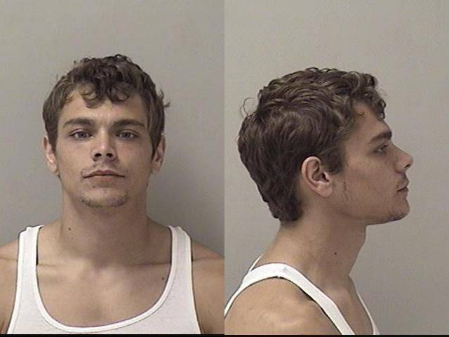 South Elgin man gets 3� years in prison for burglaries