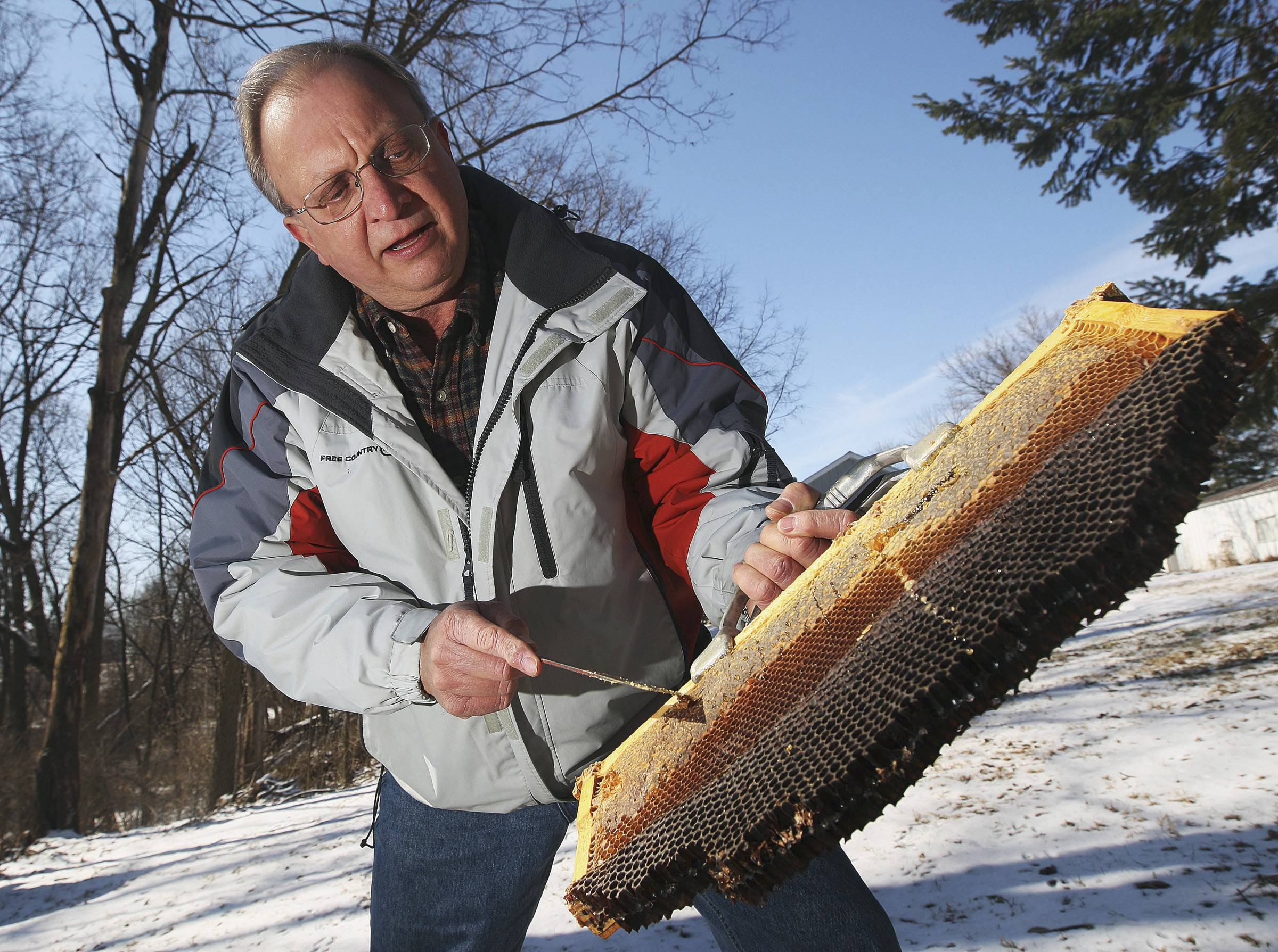 Sangamon Valley Beekeepers Association member Dave Pangrac shows an empty bee colony frame from one of his hives in his backyard in Decatur.