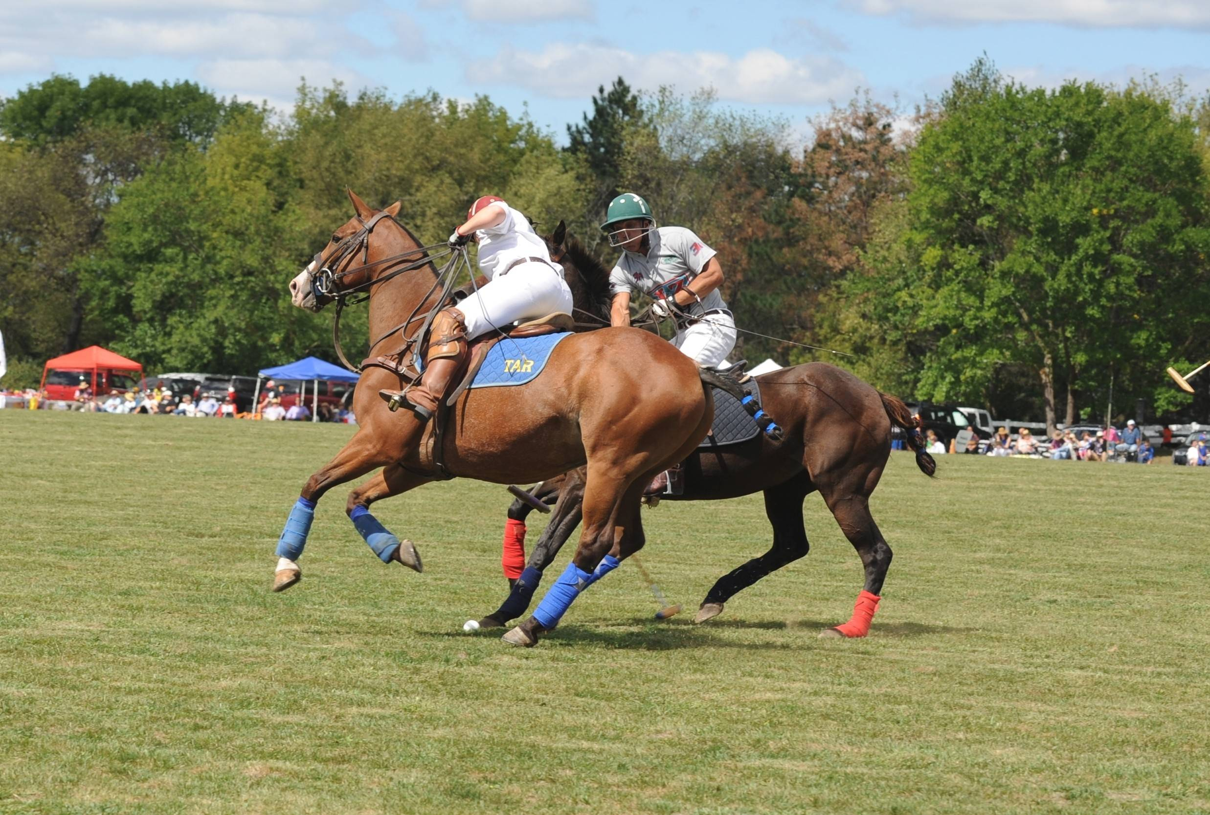 Tracy Regas, left, competes with Jeff Hensel for the ball at a Barrington Hills Polo Club match. Both are graduates of the Barrington Hills Polo School.