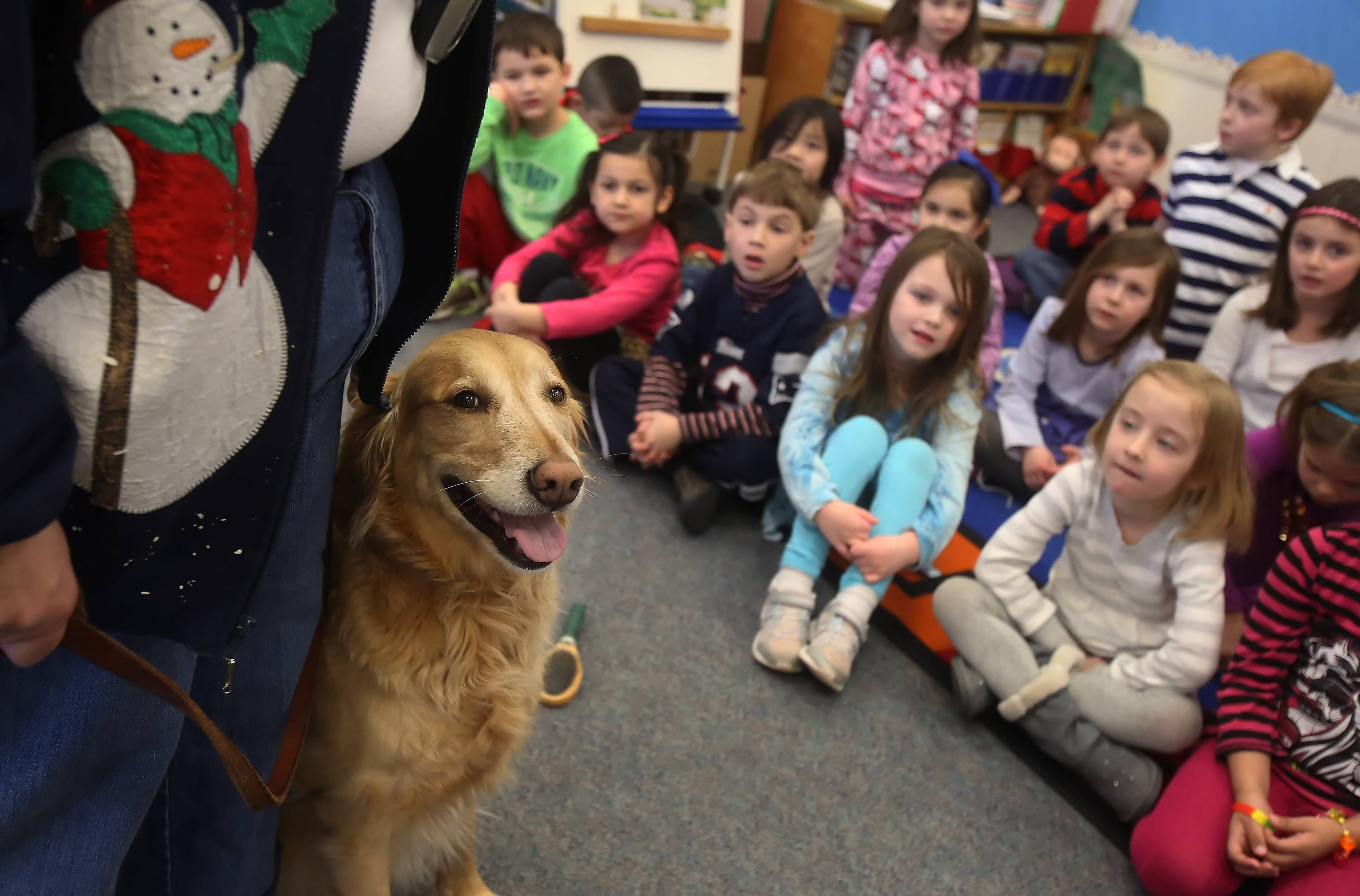 Students learn about the work done by therapy dog, Payton, a golden retriever, by Cathy Jackson during Kindergarten Career Fair Day at Rockland School in Libertyville. Students learned about jobs from a librarian, a firefighter, a human resources director and a therapy dog handler.