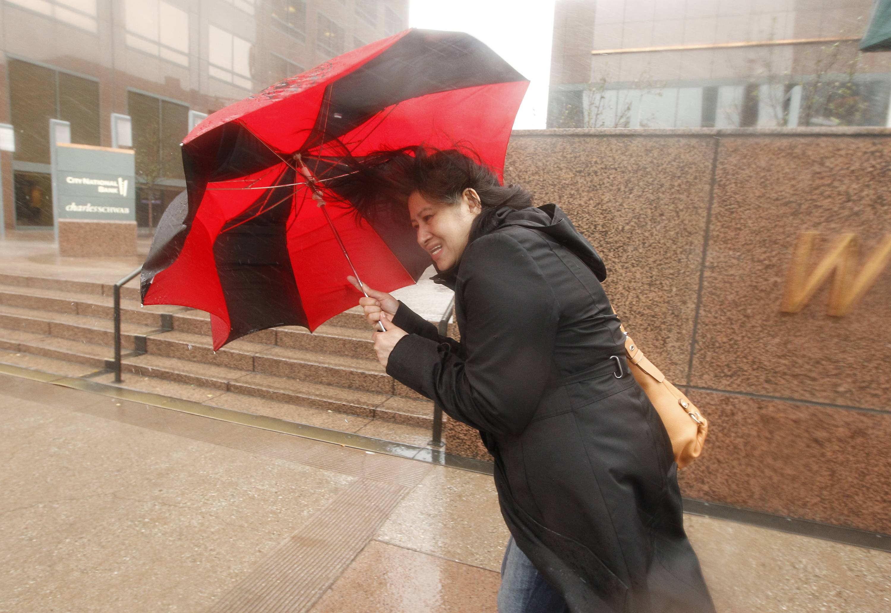 A pedestrian blocks the heavy winds Friday with her umbrella in Los Angeles.