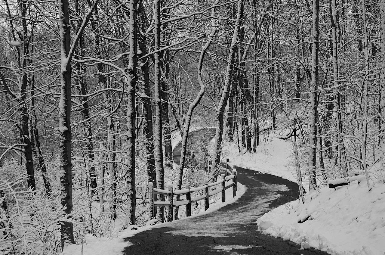 A winter's walk in Sharon Woods in Cincinati, Ohio during March 2013.