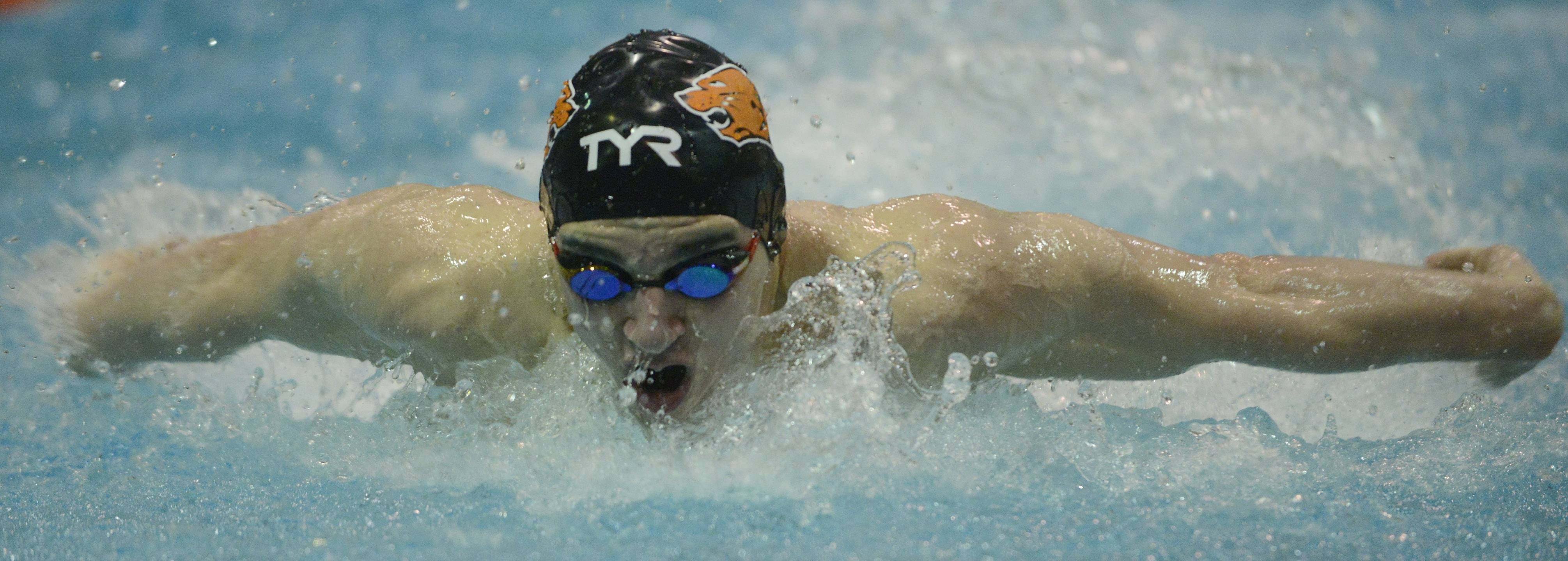 Libertyville's Matt Harrington swims the 100-yard butterfly during the boys swimming state meet finals at Evanston High School on Saturday.