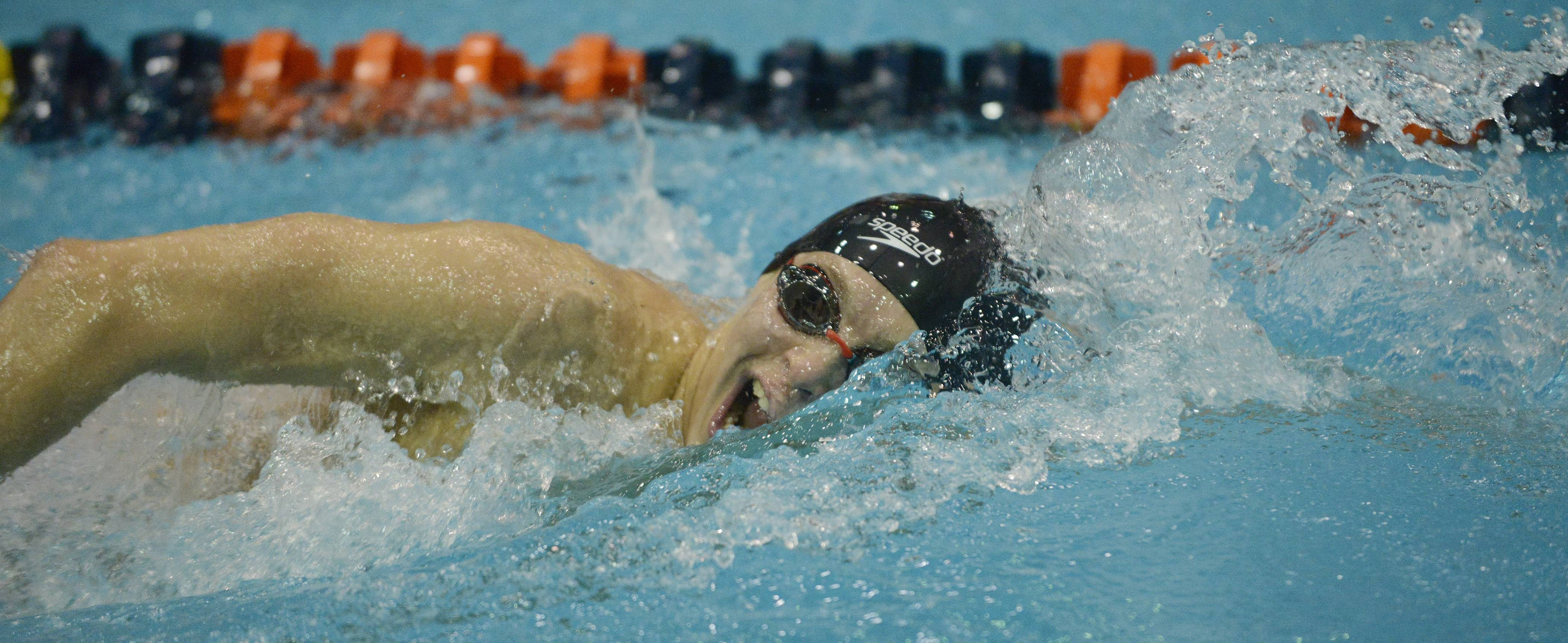 Jacobs' Alex Reinbrecht swims in the consolation finals of the 500-yard freestyle during the boys state swimming meet at Evanston High School Saturday. Reinbrecht, a senior, won the consolation championship in the event.