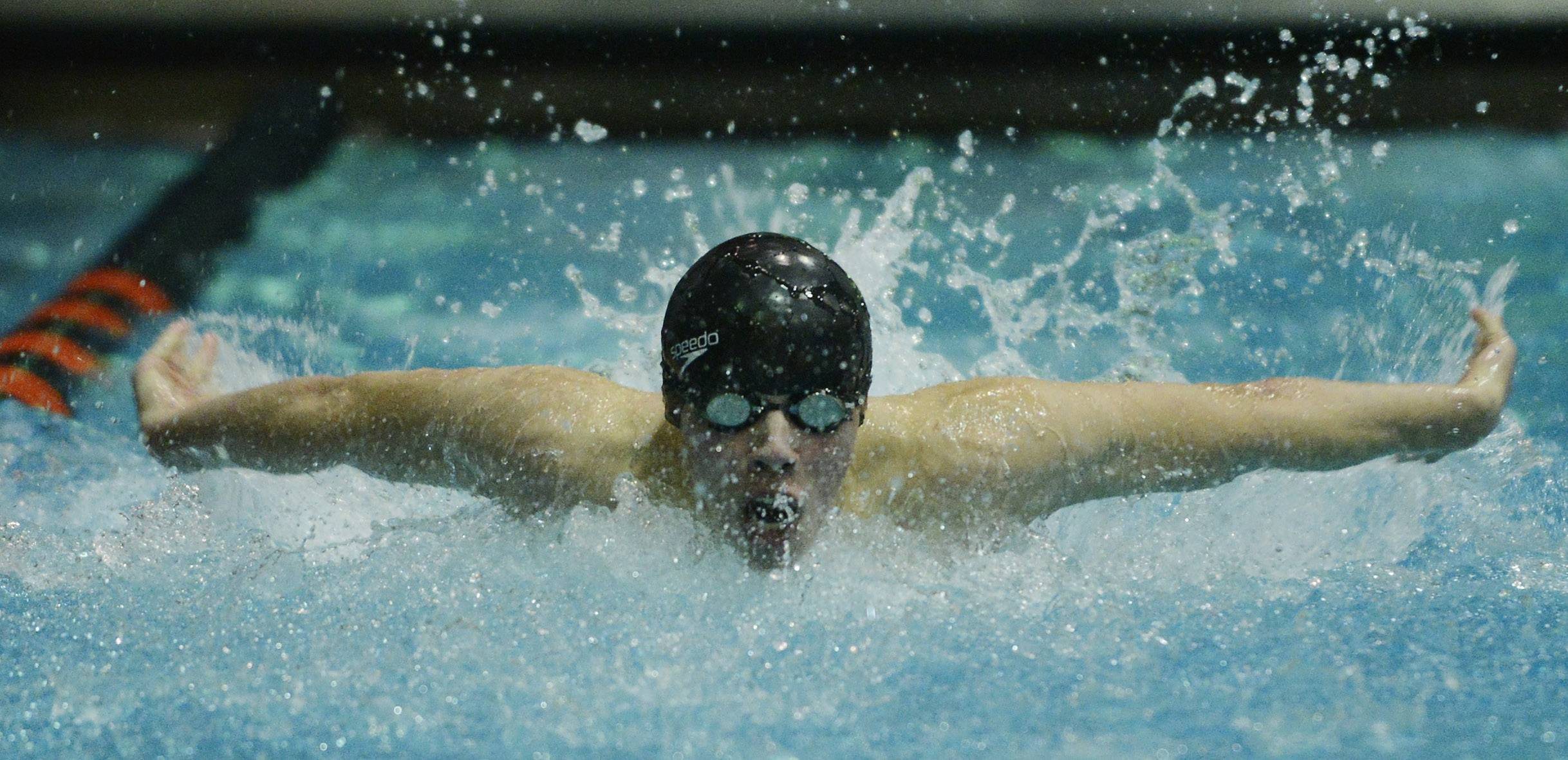 Elk Grove's Colin Williams swims the 100-yard butterfly in the consolation finals during the boys state swimming meet at Evanston High School Saturday.