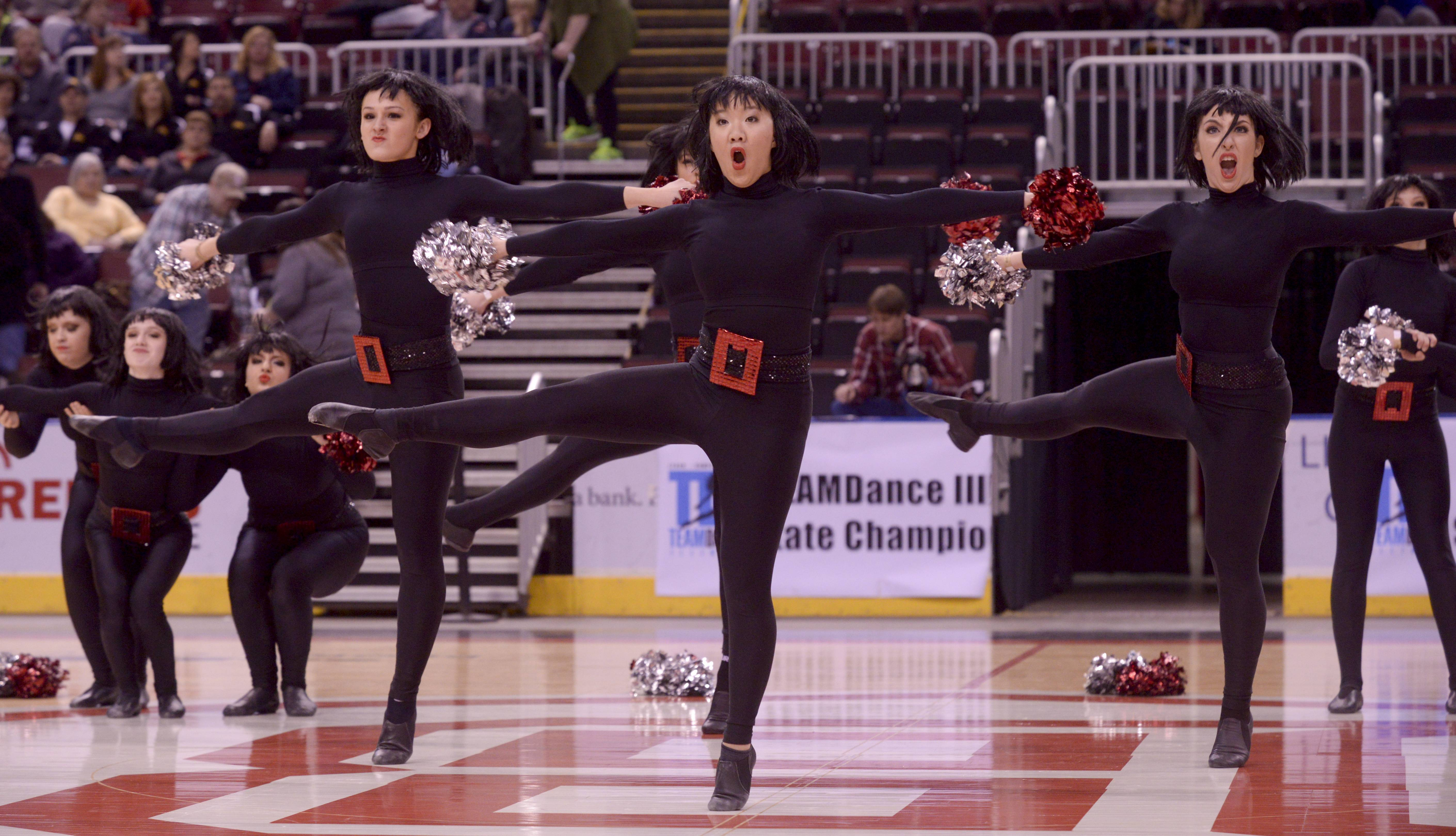 South Elgin High School performs in the 3A Open Pom category during the Team Dance Illinois 2014 Grand Championship in Peoria Sunday.