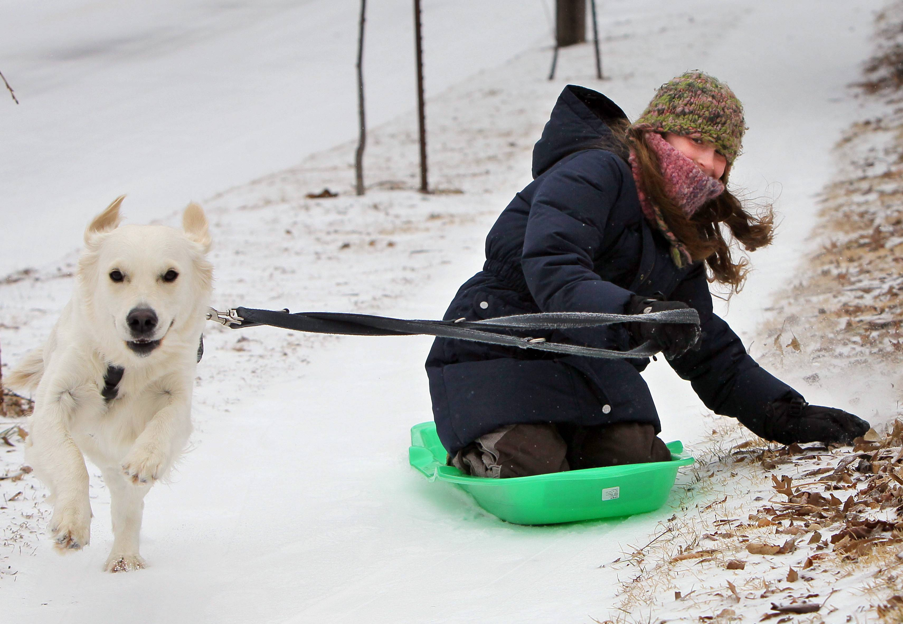 Mila Olias, 10, and her dog Momo take a sled run down a sidewalk Sunday in Richmond Heights, Mo. A winter storm packing high winds, ice and heavy snow threatened to create hazardous driving conditions across Kansas and Missouri, accompanied by wind chills approaching 25 below zero in some areas.