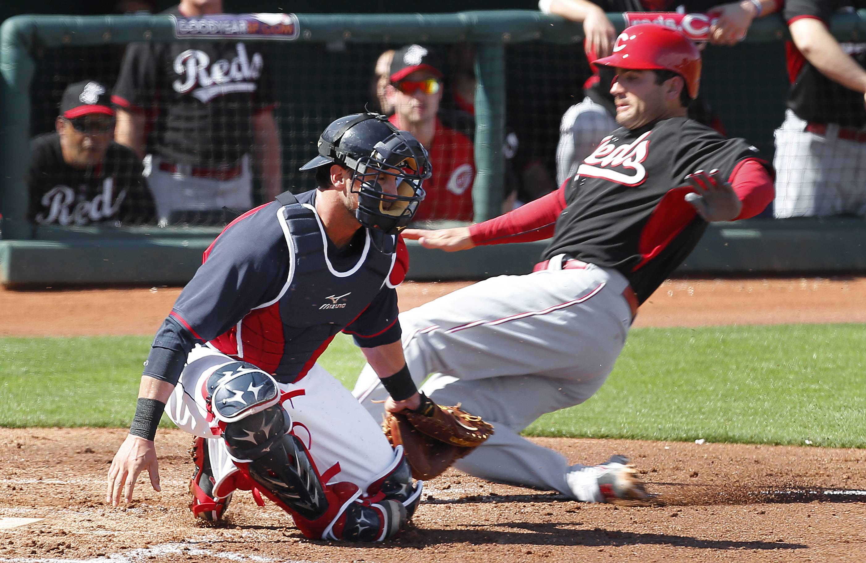 Cincinnati Reds' Joey Votto, right, scores as Cleveland Indians catcher Yan Gomes is late with the tag at home plate on a Ryan Ludwick single in the third inning of a Feb. 26 exhibition baseball game in Goodyear, Ariz.