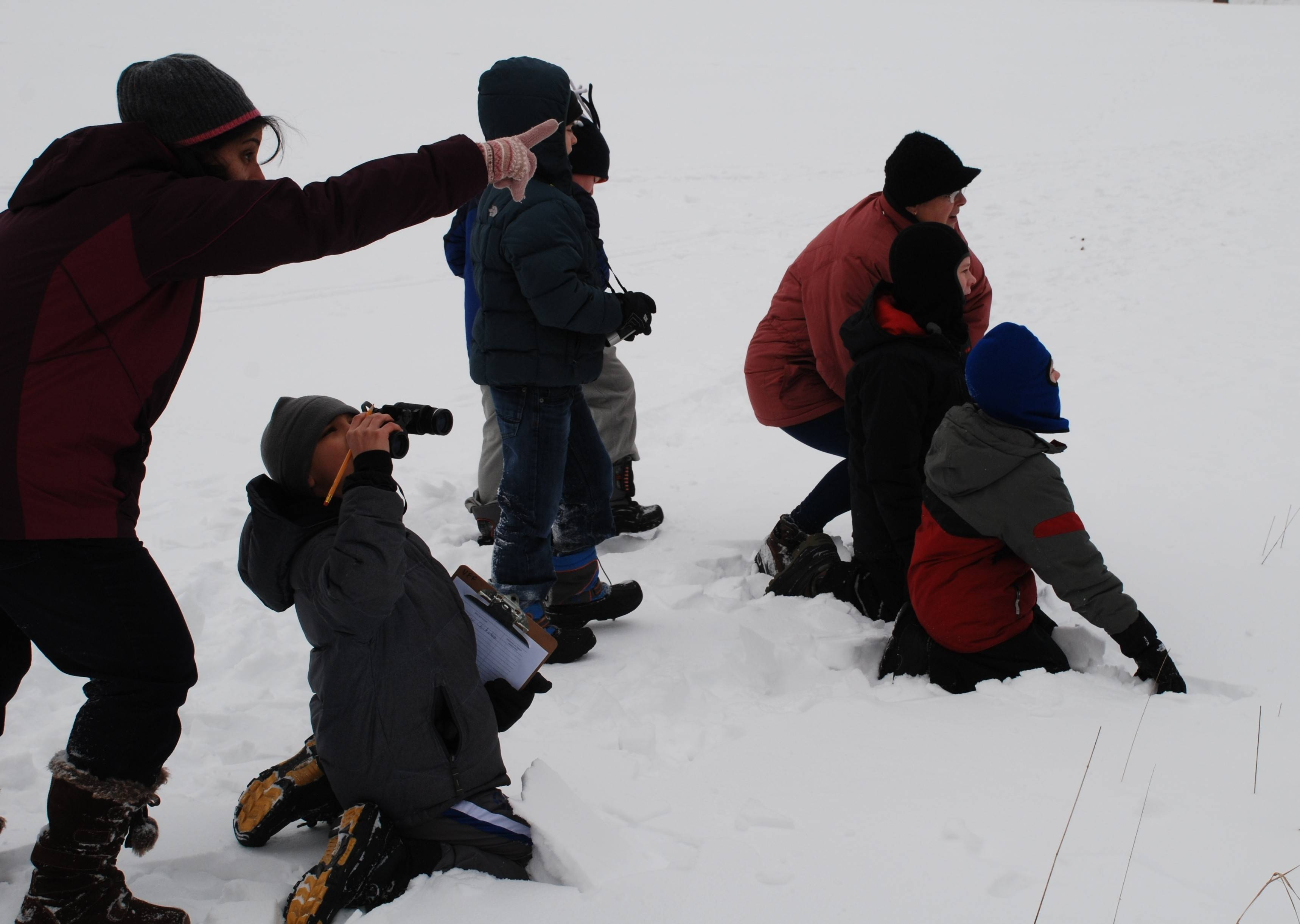 Children search for birds during the Great Backyard Bird Count in Barrington with Citizens for Conservation and the Prairie Woods Audubon.