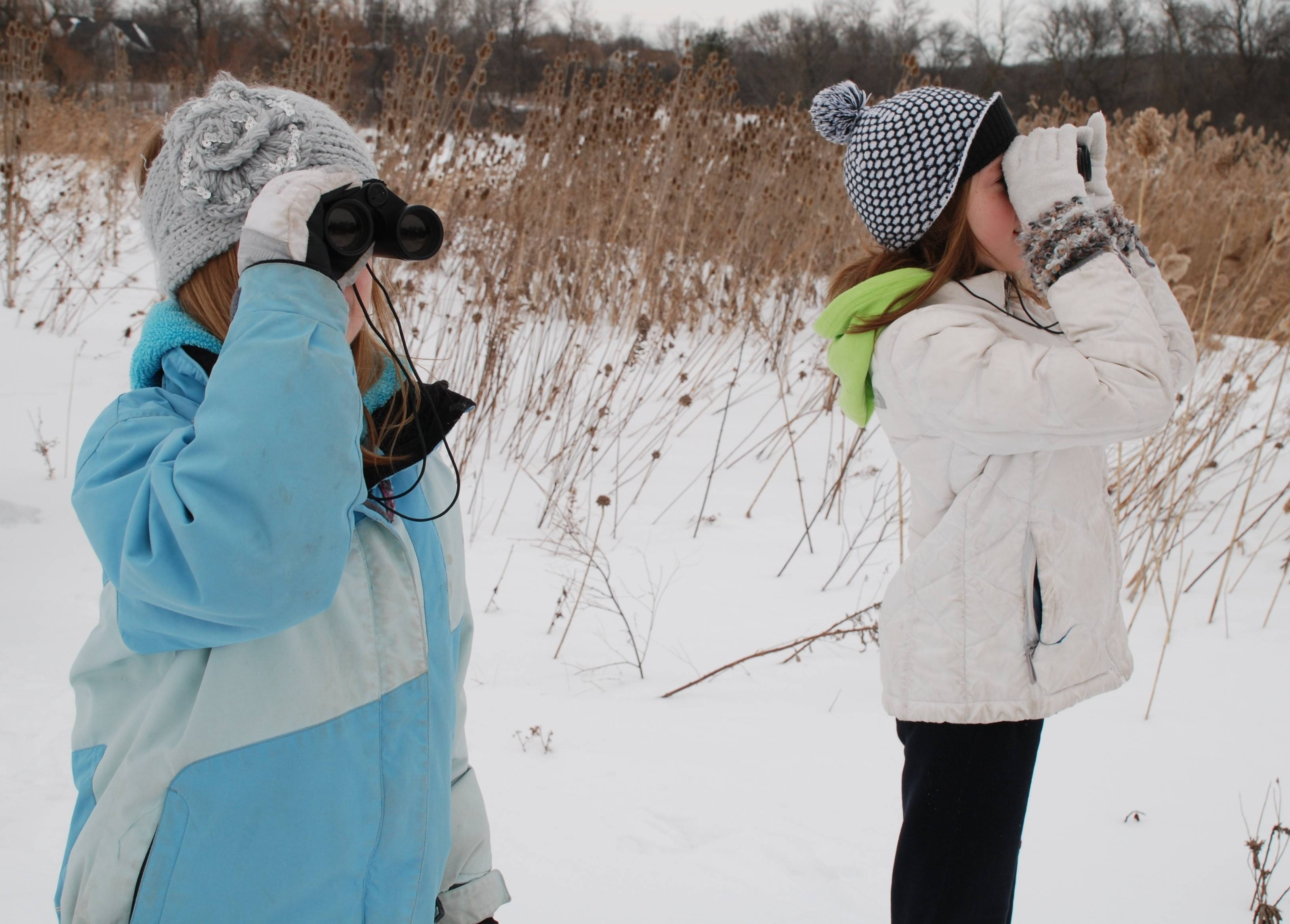 On a blustery Saturday, children brave the cold to help count birds during the 16th annual Great Backyard Bird Count.
