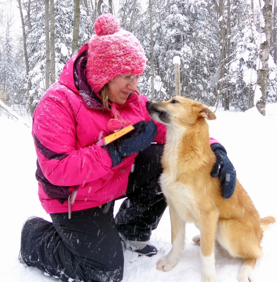 Bonding with one of the sled dogs, Jen Gaidjunas of Tower Lakes has learned to embrace winter. She even persuaded her older sister from Florida to endure a 100-degree temperature plunge by joining her on a Trailbound Trips pilgrimage to Michigan's Upper Peninsula.