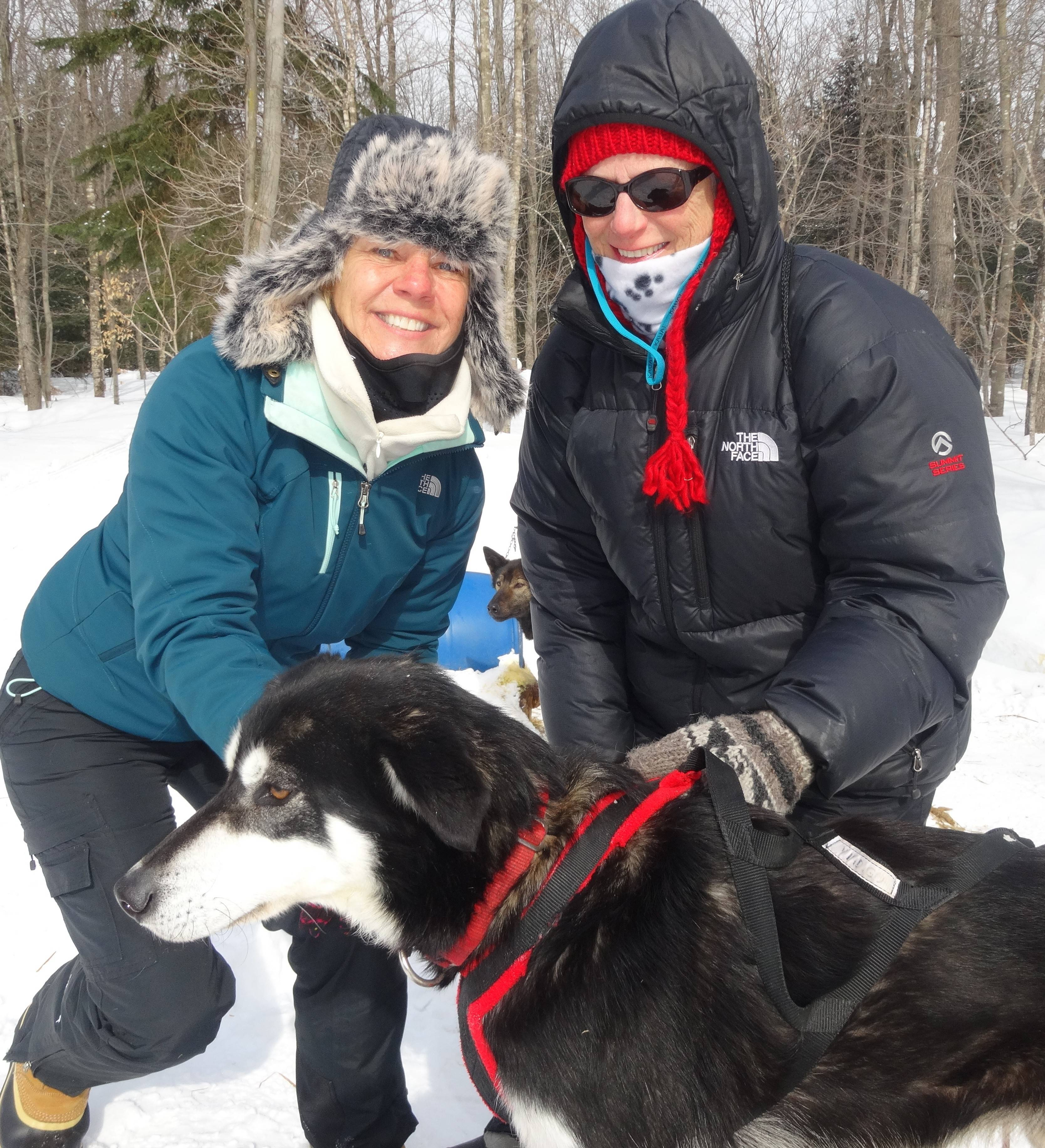 "A veteran of the Northwoods Dog Sled Adventure, Janet Hillier, left, of Wauconda harnesses one of her dogs with the help of fellow adventurer Marie Ryan. ""Most of my friends and family head south,"" says Hillier, who embarked on a trip in subzero temperatures to Michigan's Upper Peninsula."