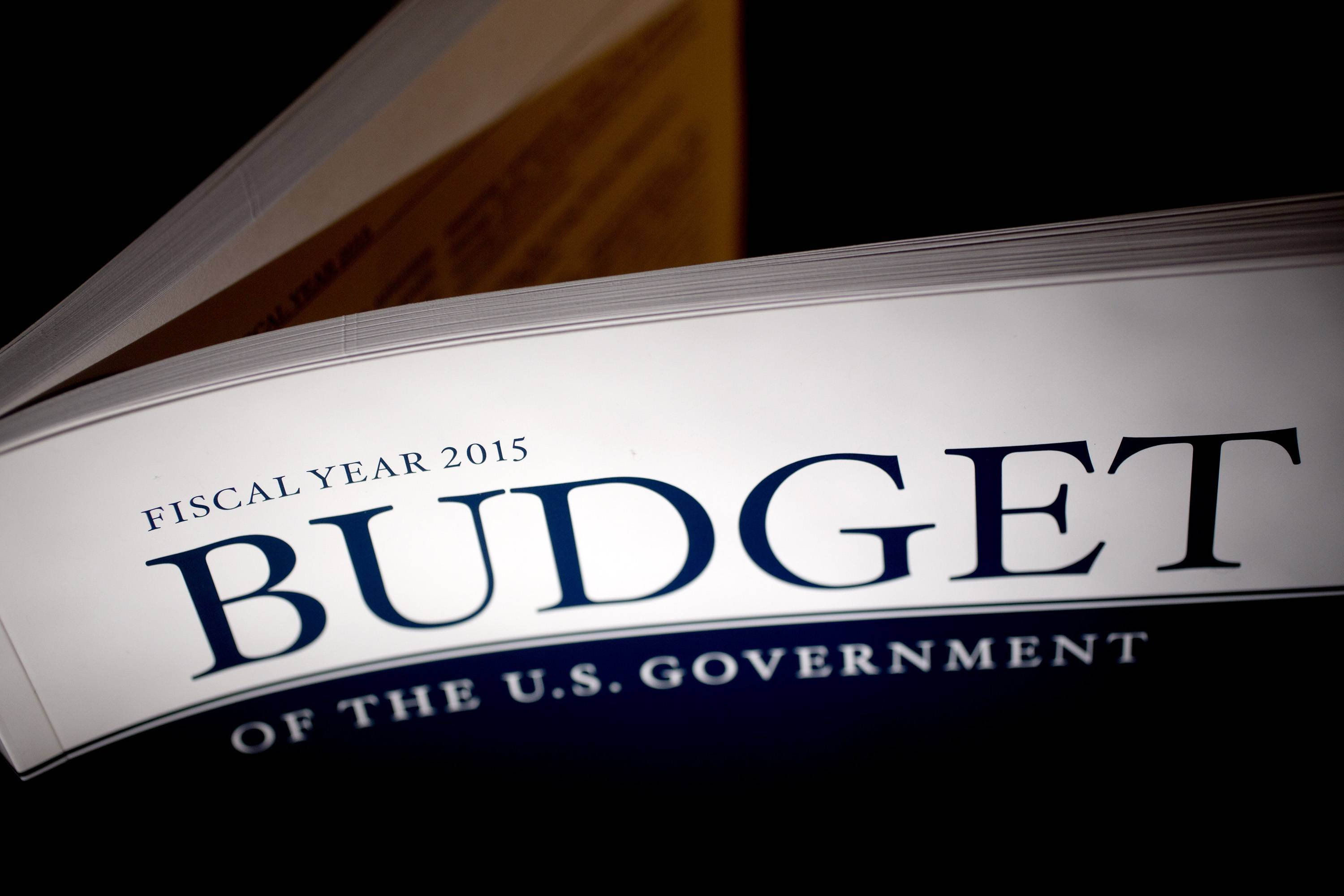 Republicans are dismissing President Barack Obama's new $3.9 trillion budget as nothing more than a Democratic manifesto for this fall's congressional campaigns, but the fiscal plan is taking hits from another quarter too -- anti-deficit groups.