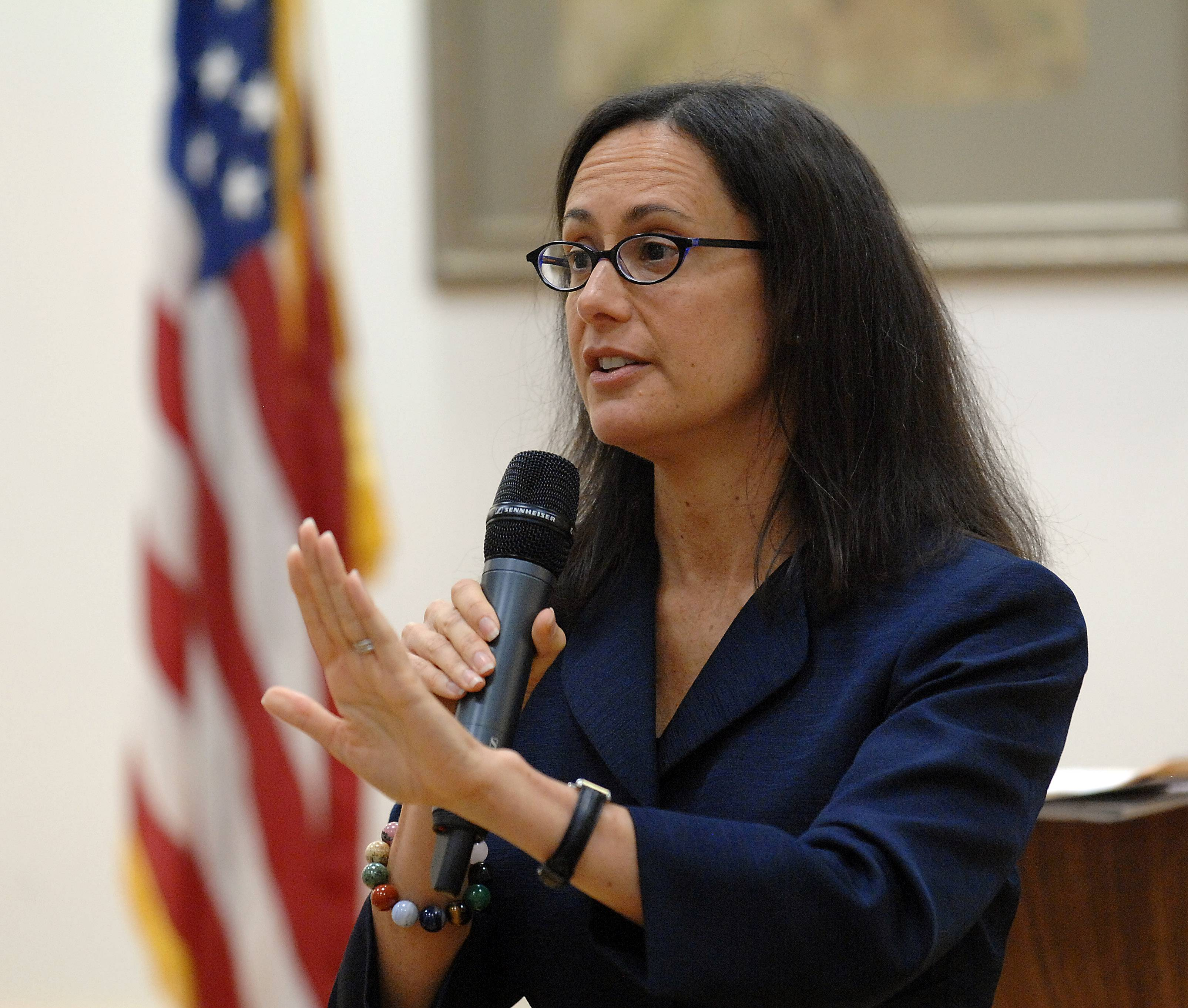 Illinois Attorney General Lisa Madigan says her office will side with same-sex couples who sue to get marriage licenses before June 1 and urged county clerks to begin issuing marriage licenses now.