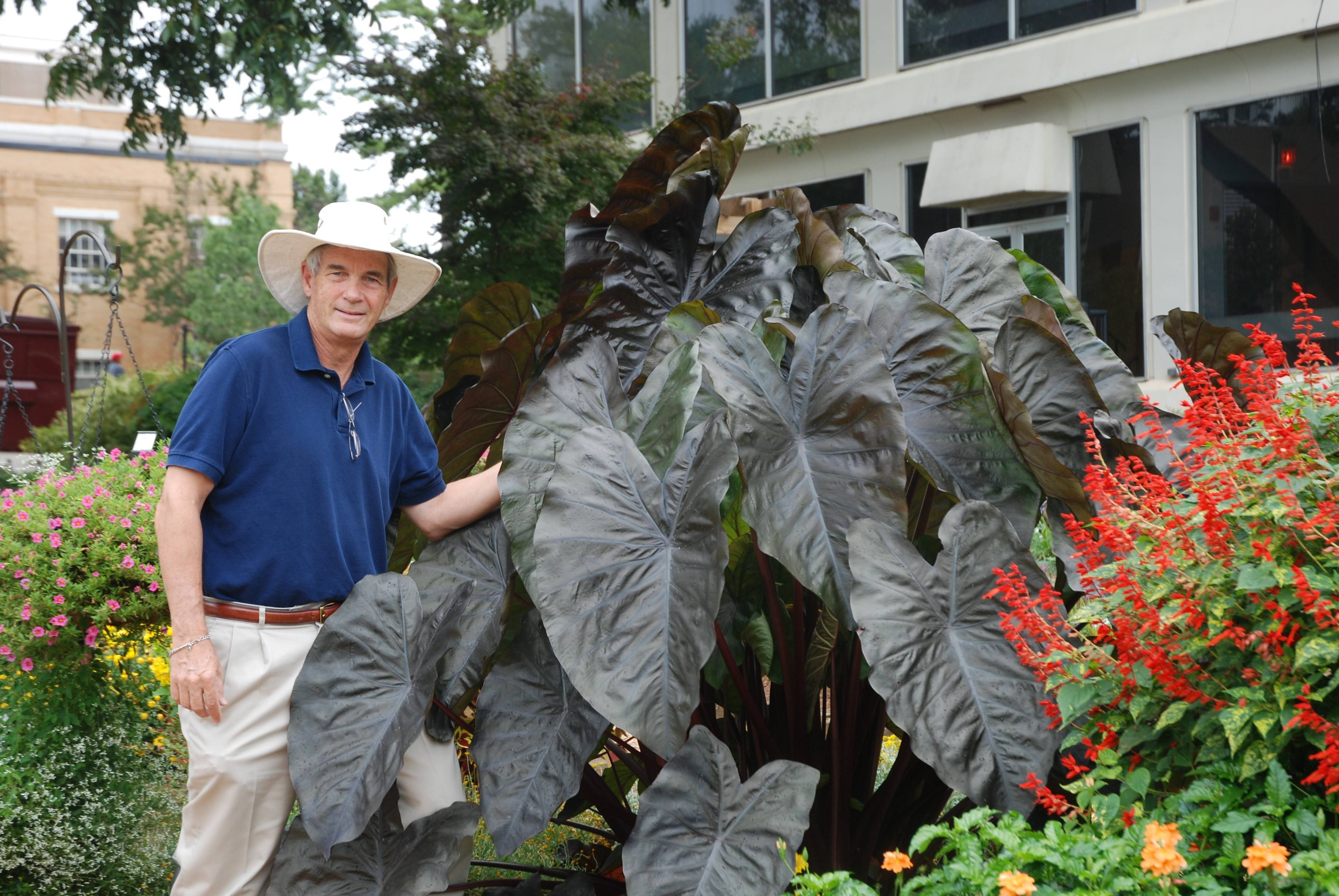 "University of Georgia horticulturist Allan Armitage picks his favorite new plant varieties for the season. ""You've got to have these fun things,"" he said."